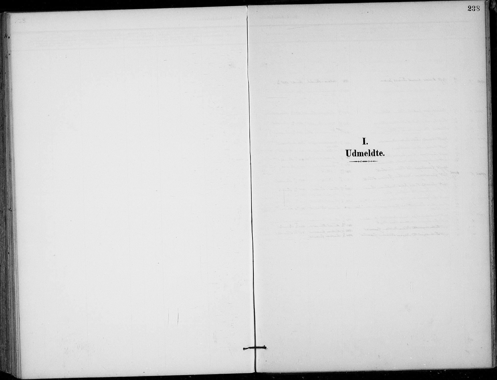 SAKO, Siljan kirkebøker, F/Fa/L0003: Ministerialbok nr. 3, 1896-1910, s. 238