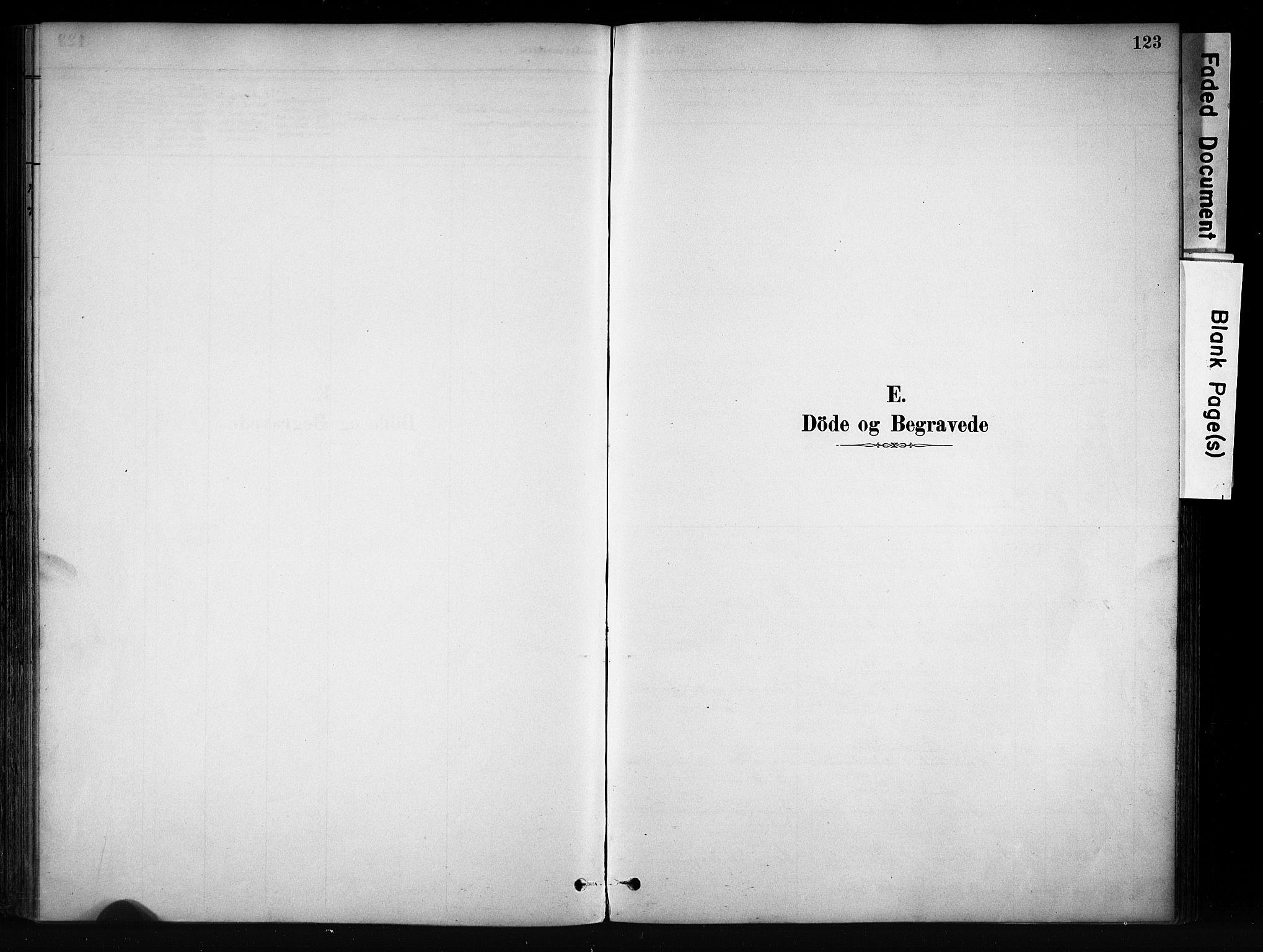 SAH, Vang prestekontor, Valdres, Ministerialbok nr. 9, 1882-1914, s. 123