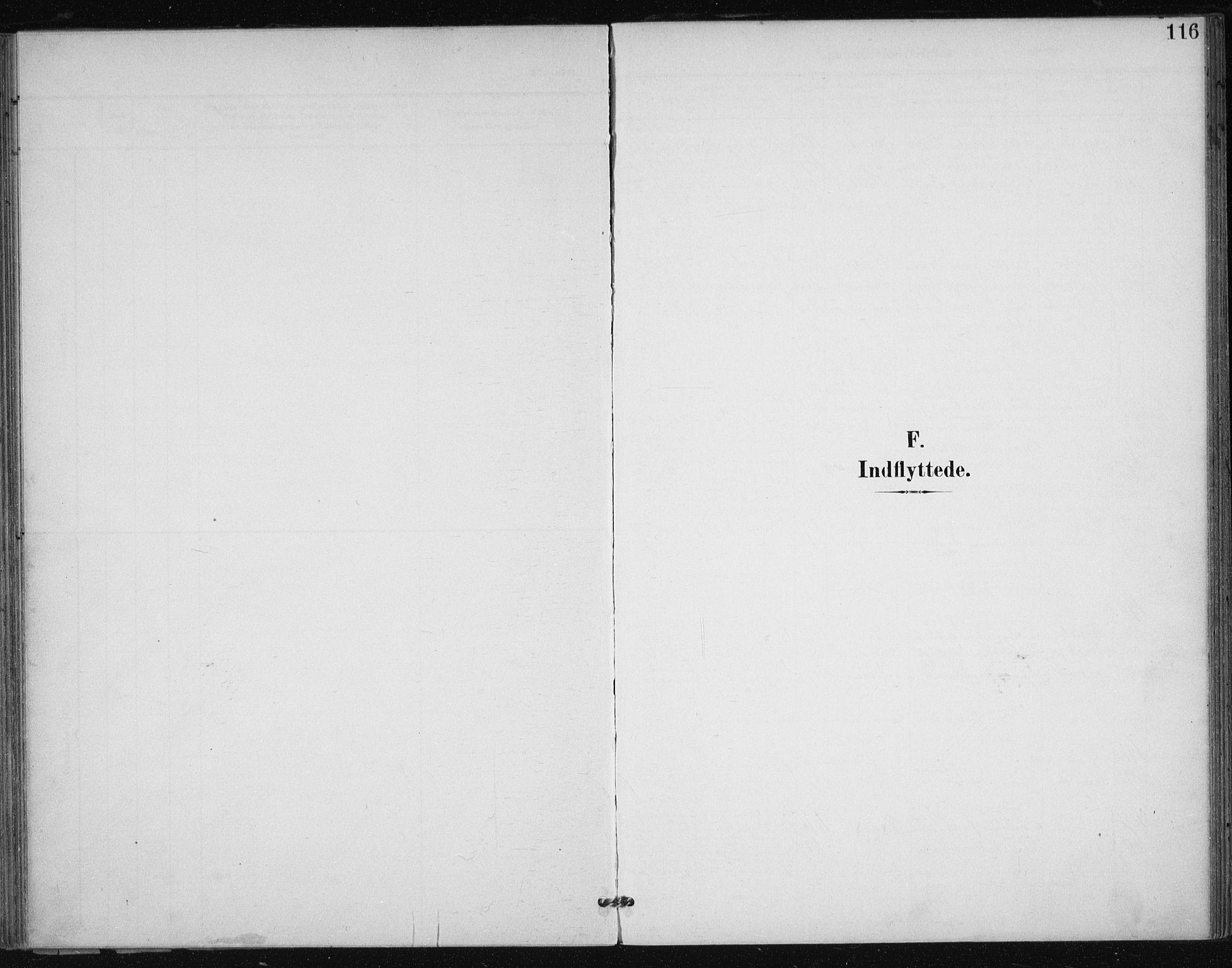 SAT, Ministerialprotokoller, klokkerbøker og fødselsregistre - Sør-Trøndelag, 612/L0380: Ministerialbok nr. 612A12, 1898-1907, s. 116