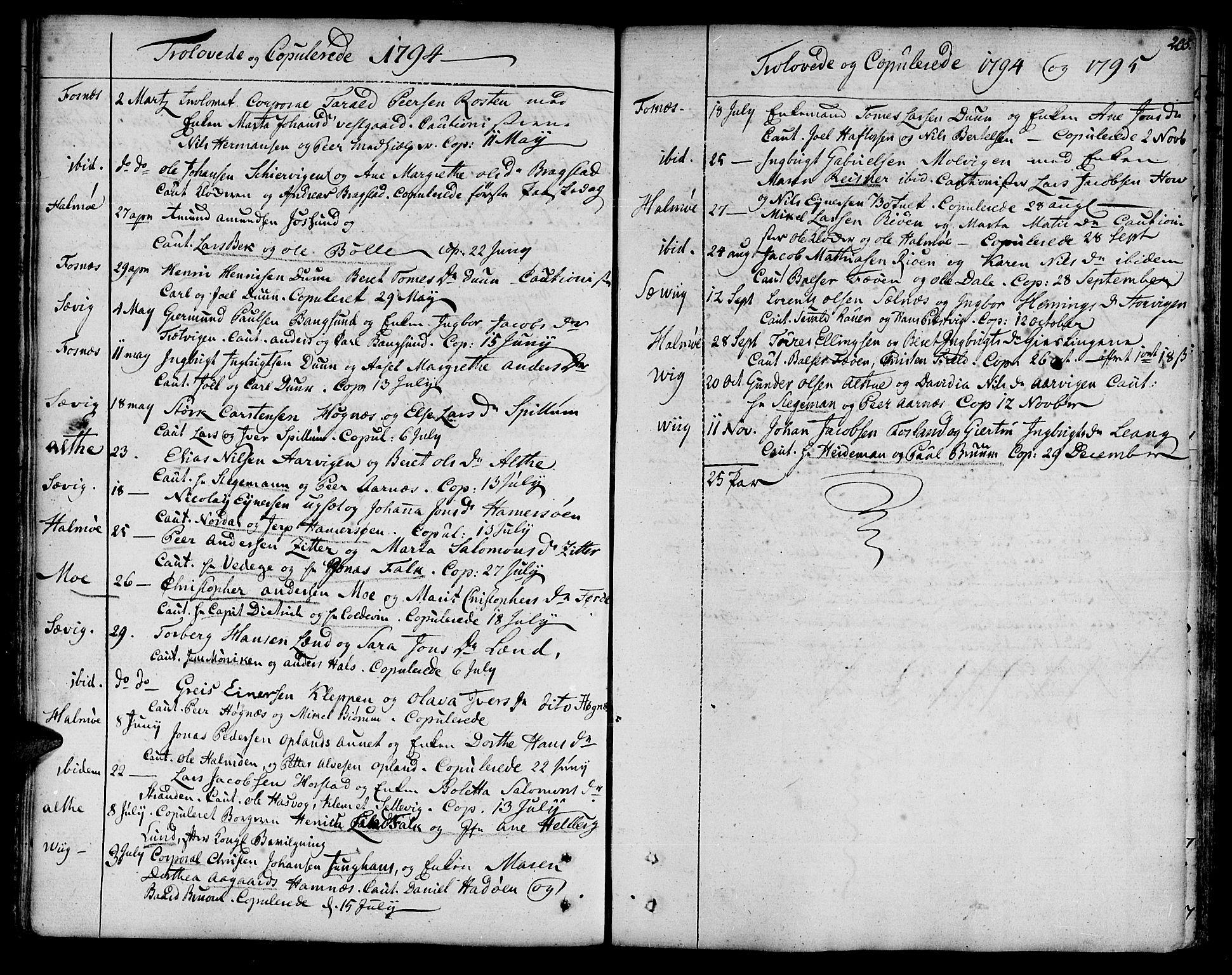SAT, Ministerialprotokoller, klokkerbøker og fødselsregistre - Nord-Trøndelag, 773/L0608: Ministerialbok nr. 773A02, 1784-1816, s. 205