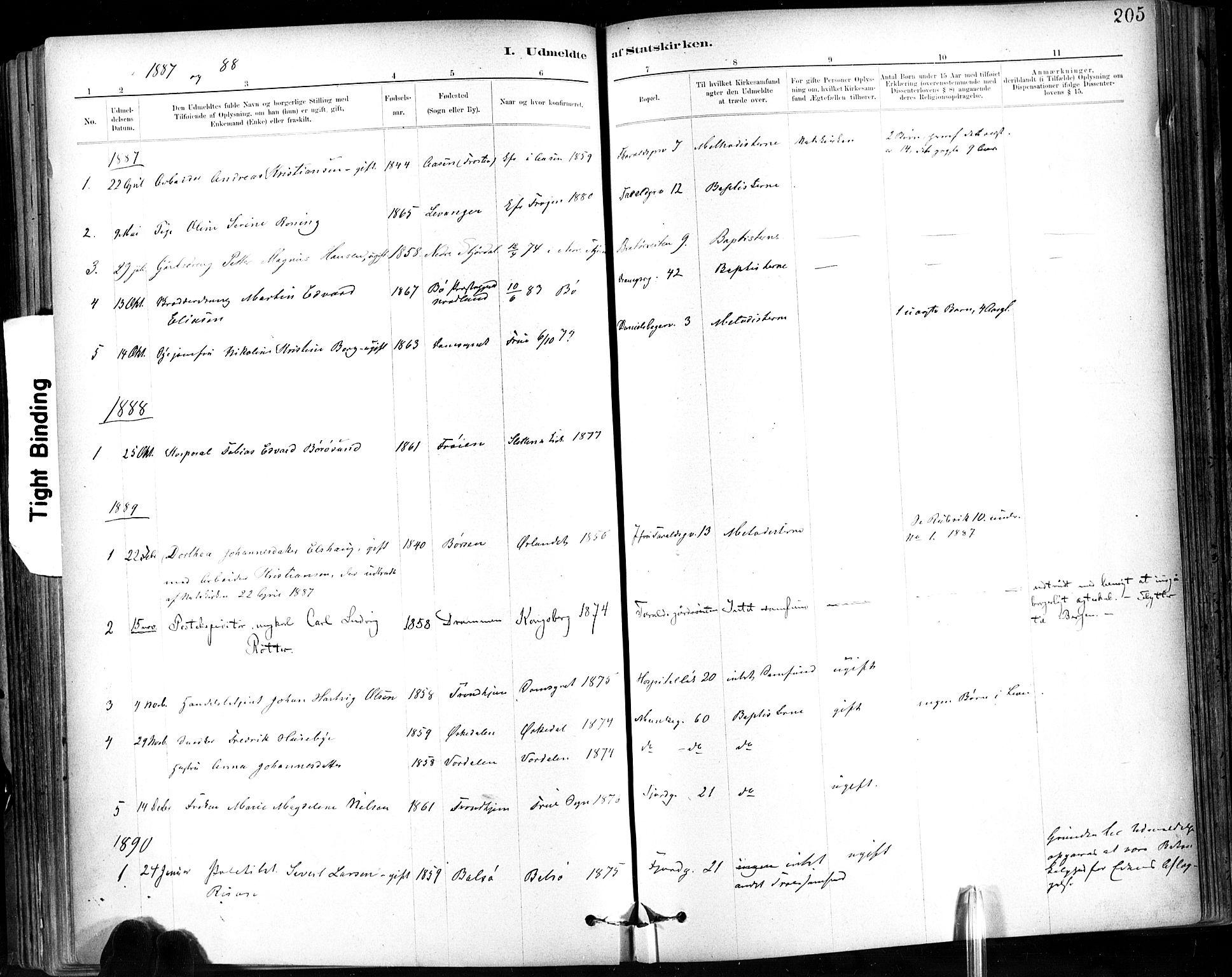 SAT, Ministerialprotokoller, klokkerbøker og fødselsregistre - Sør-Trøndelag, 602/L0120: Ministerialbok nr. 602A18, 1880-1913, s. 205