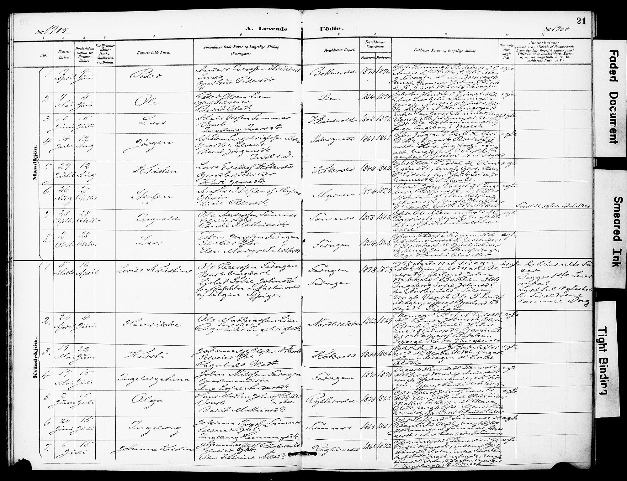 SAT, Ministerialprotokoller, klokkerbøker og fødselsregistre - Sør-Trøndelag, 683/L0948: Ministerialbok nr. 683A01, 1891-1902, s. 21