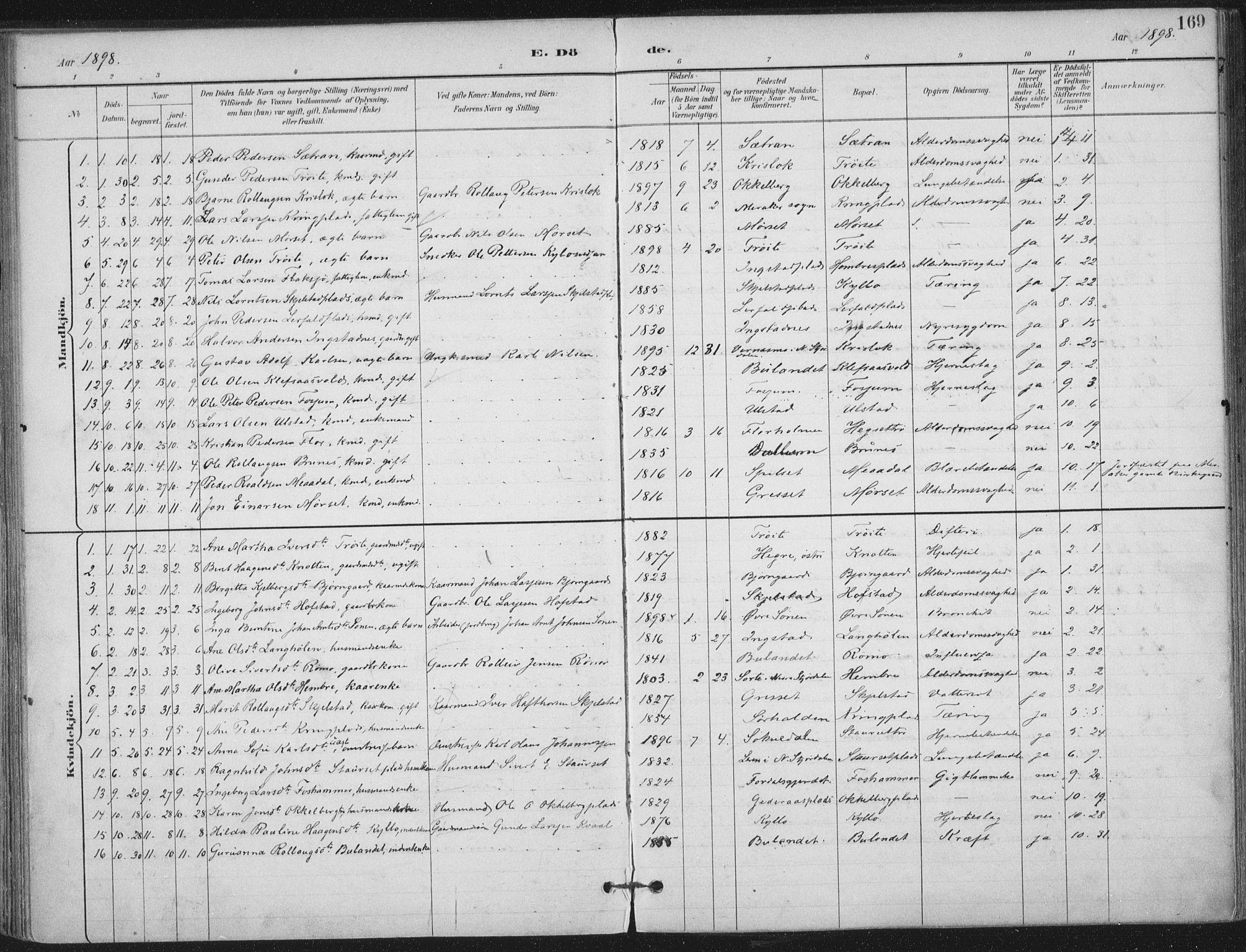 SAT, Ministerialprotokoller, klokkerbøker og fødselsregistre - Nord-Trøndelag, 703/L0031: Ministerialbok nr. 703A04, 1893-1914, s. 169