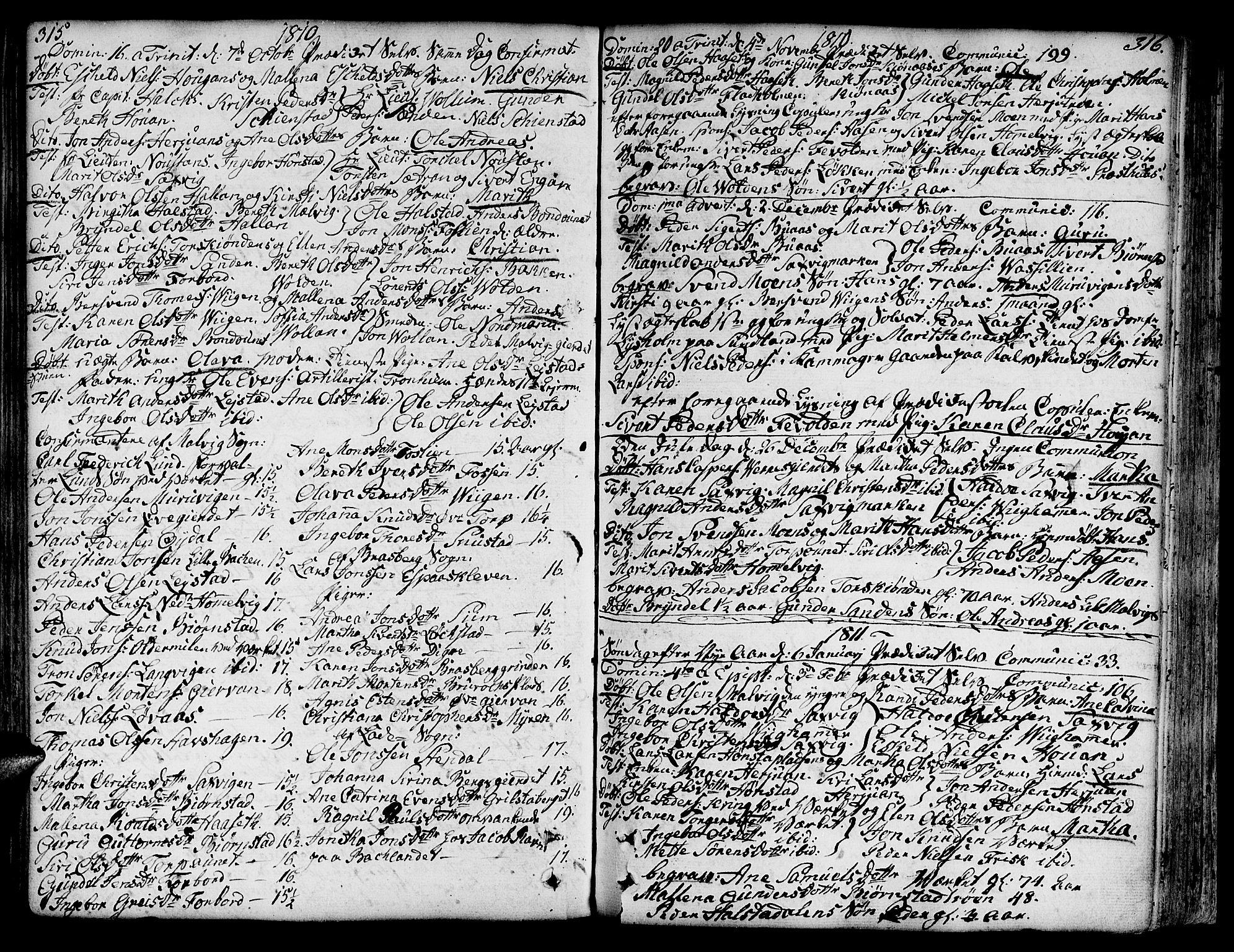 SAT, Ministerialprotokoller, klokkerbøker og fødselsregistre - Sør-Trøndelag, 606/L0281: Ministerialbok nr. 606A02 /2, 1781-1817, s. 315-316
