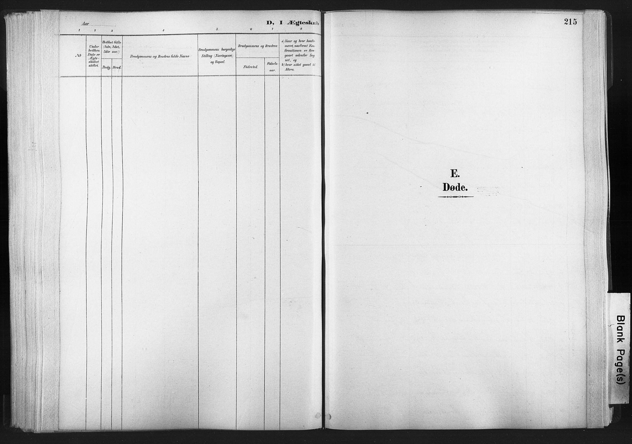 SAT, Ministerialprotokoller, klokkerbøker og fødselsregistre - Nord-Trøndelag, 749/L0474: Ministerialbok nr. 749A08, 1887-1903, s. 215
