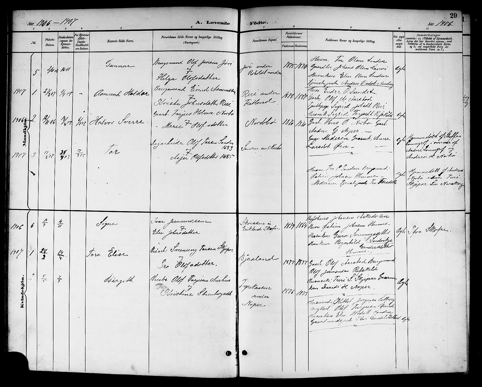 SAKO, Kviteseid kirkebøker, G/Gc/L0001: Klokkerbok nr. III 1, 1893-1916, s. 29
