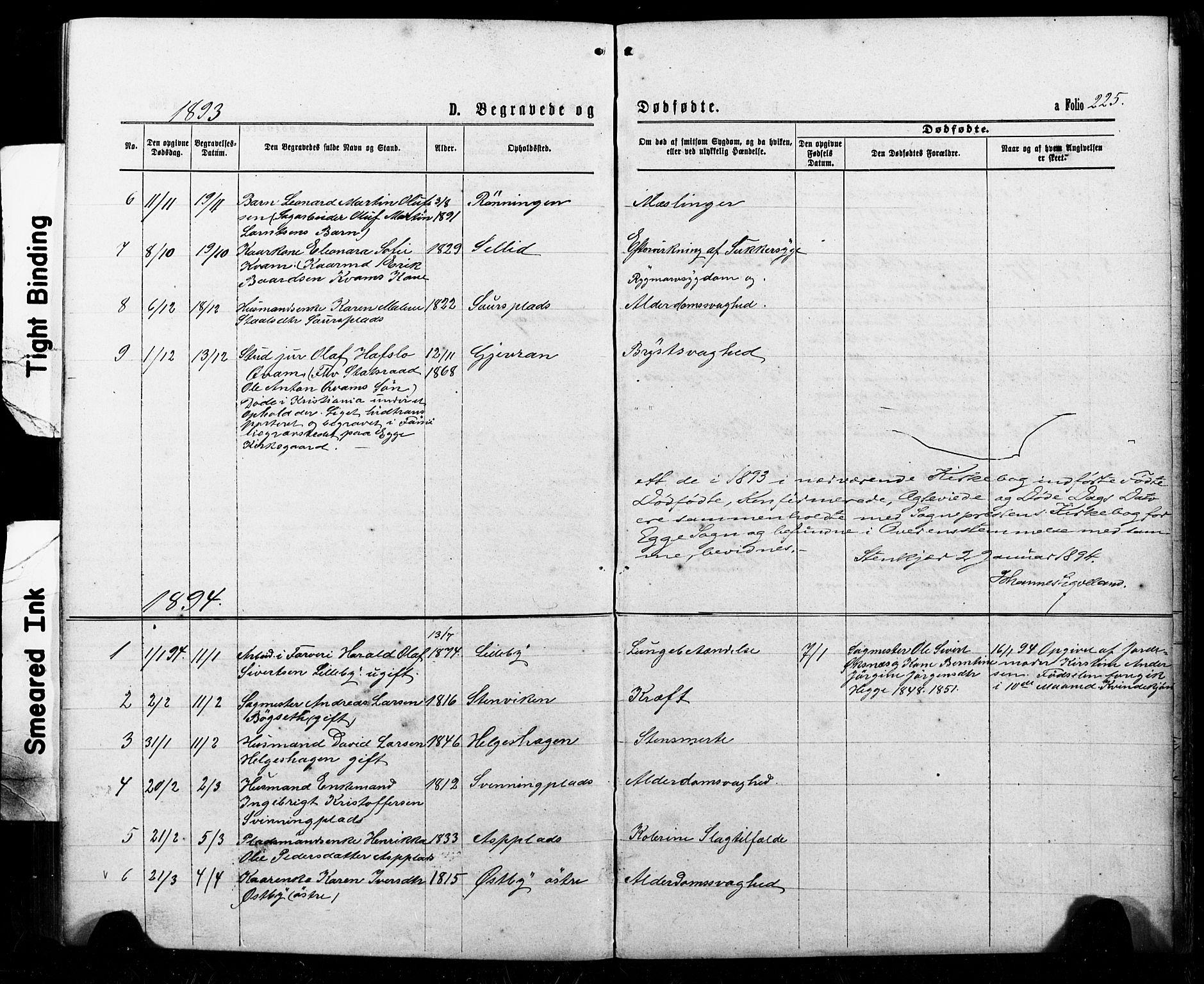 SAT, Ministerialprotokoller, klokkerbøker og fødselsregistre - Nord-Trøndelag, 740/L0380: Klokkerbok nr. 740C01, 1868-1902, s. 225