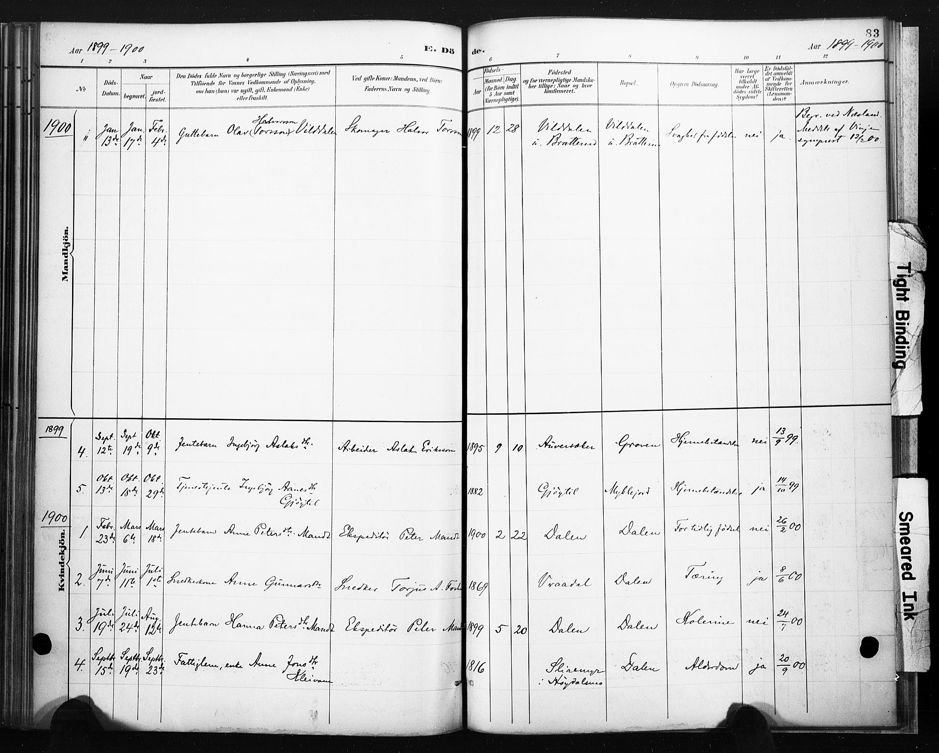 SAKO, Lårdal kirkebøker, F/Fb/L0002: Ministerialbok nr. II 2, 1887-1918, s. 83