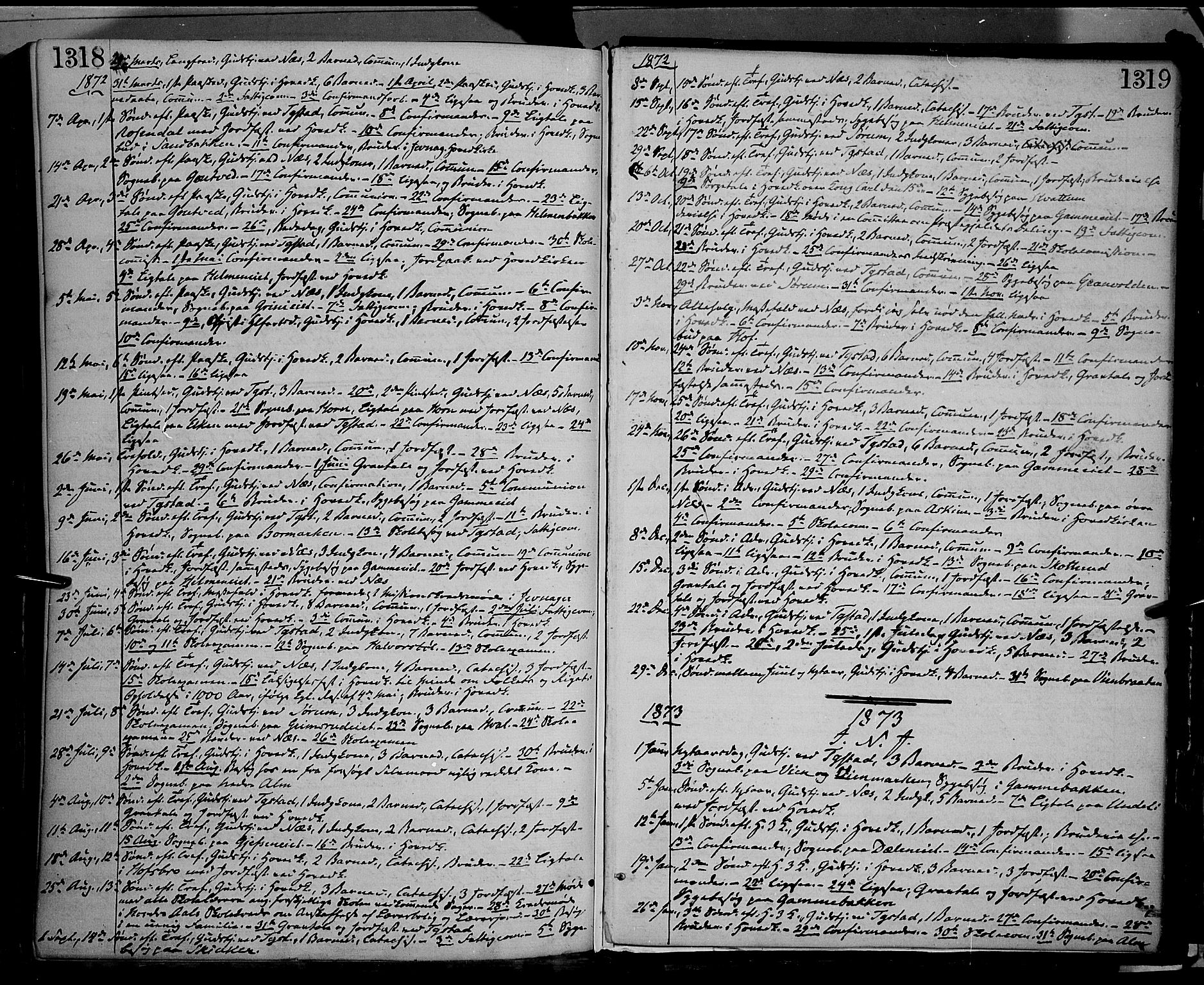 SAH, Gran prestekontor, Ministerialbok nr. 12, 1856-1874, s. 1318-1319