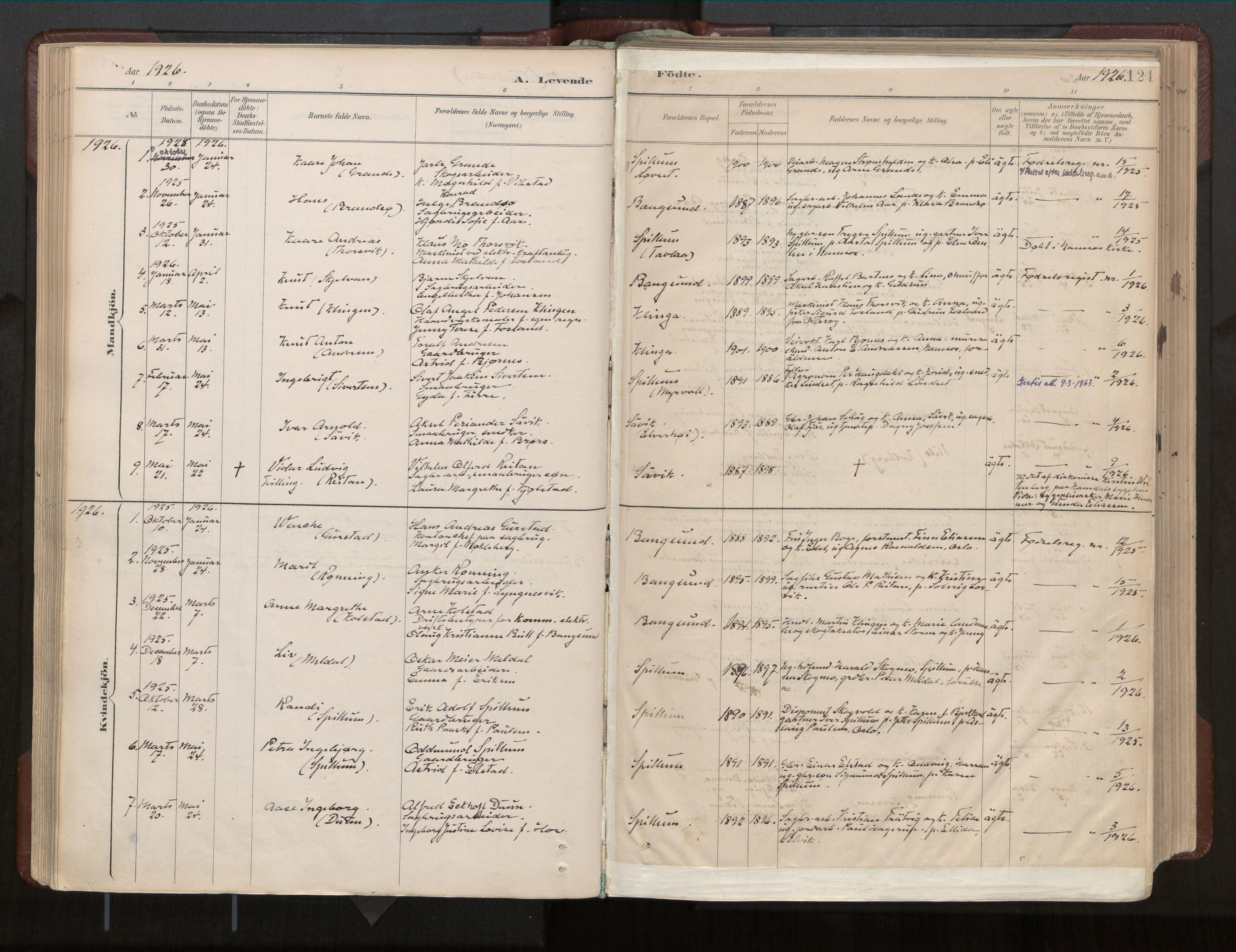 SAT, Ministerialprotokoller, klokkerbøker og fødselsregistre - Nord-Trøndelag, 770/L0589: Ministerialbok nr. 770A03, 1887-1929, s. 121