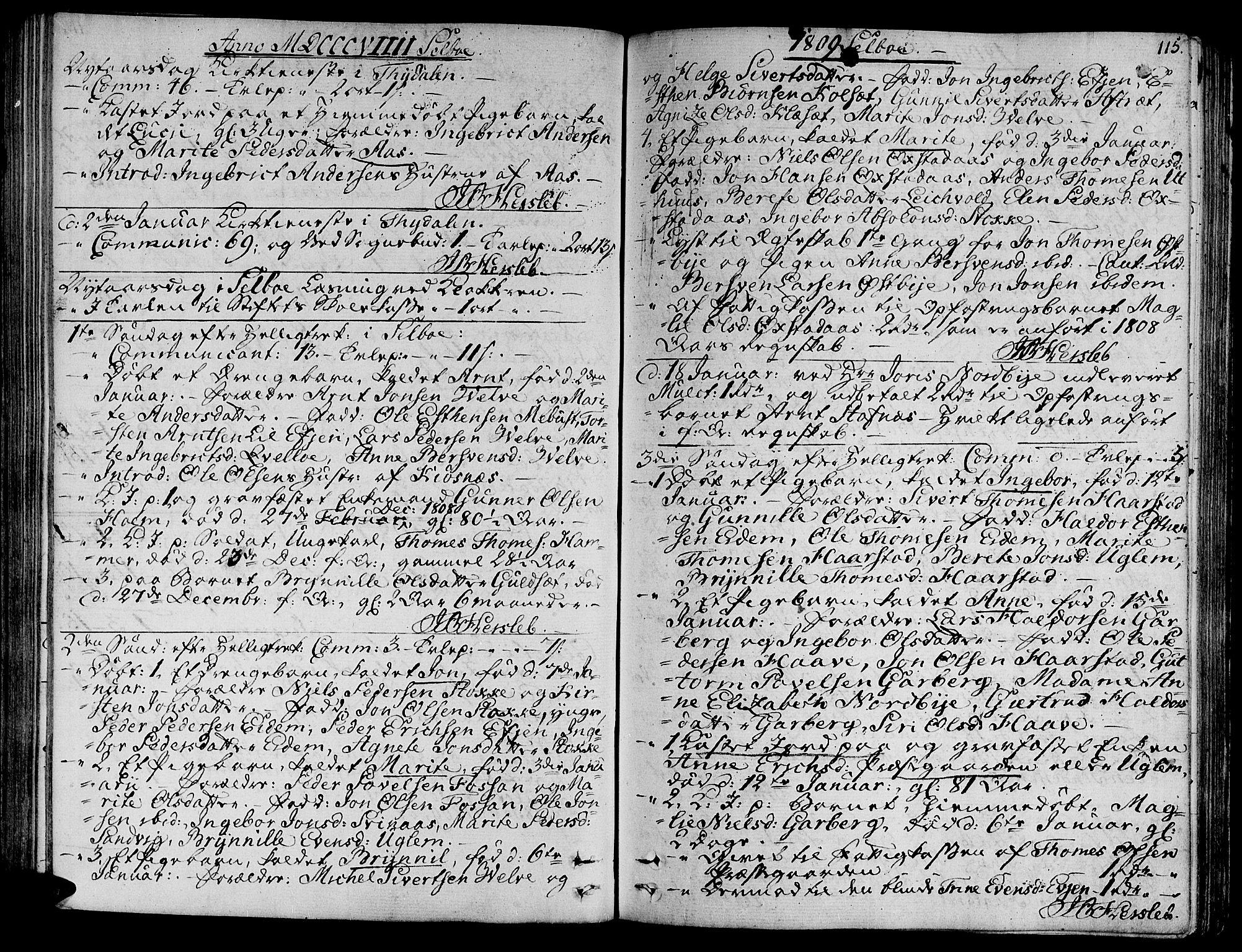 SAT, Ministerialprotokoller, klokkerbøker og fødselsregistre - Sør-Trøndelag, 695/L1140: Ministerialbok nr. 695A03, 1801-1815, s. 115