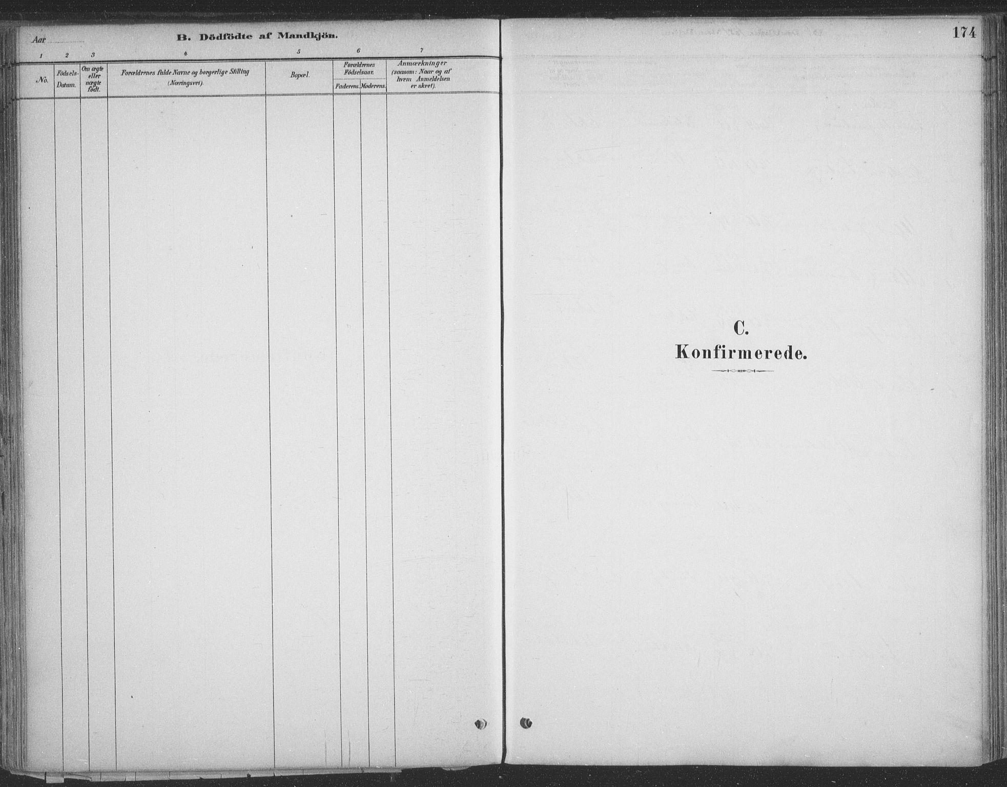 SATØ, Vadsø sokneprestkontor, H/Ha/L0009kirke: Ministerialbok nr. 9, 1881-1917, s. 174