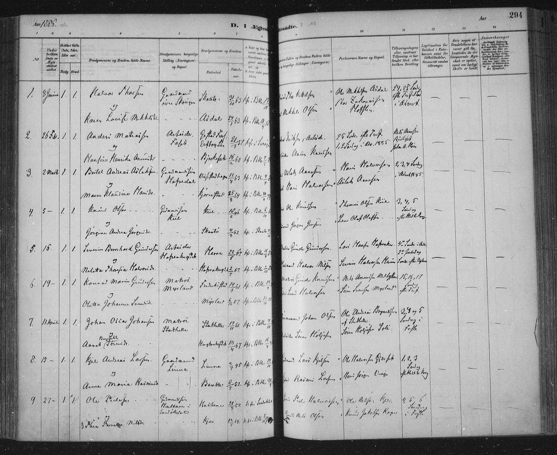 SAKO, Bamble kirkebøker, F/Fa/L0007: Ministerialbok nr. I 7, 1878-1888, s. 294