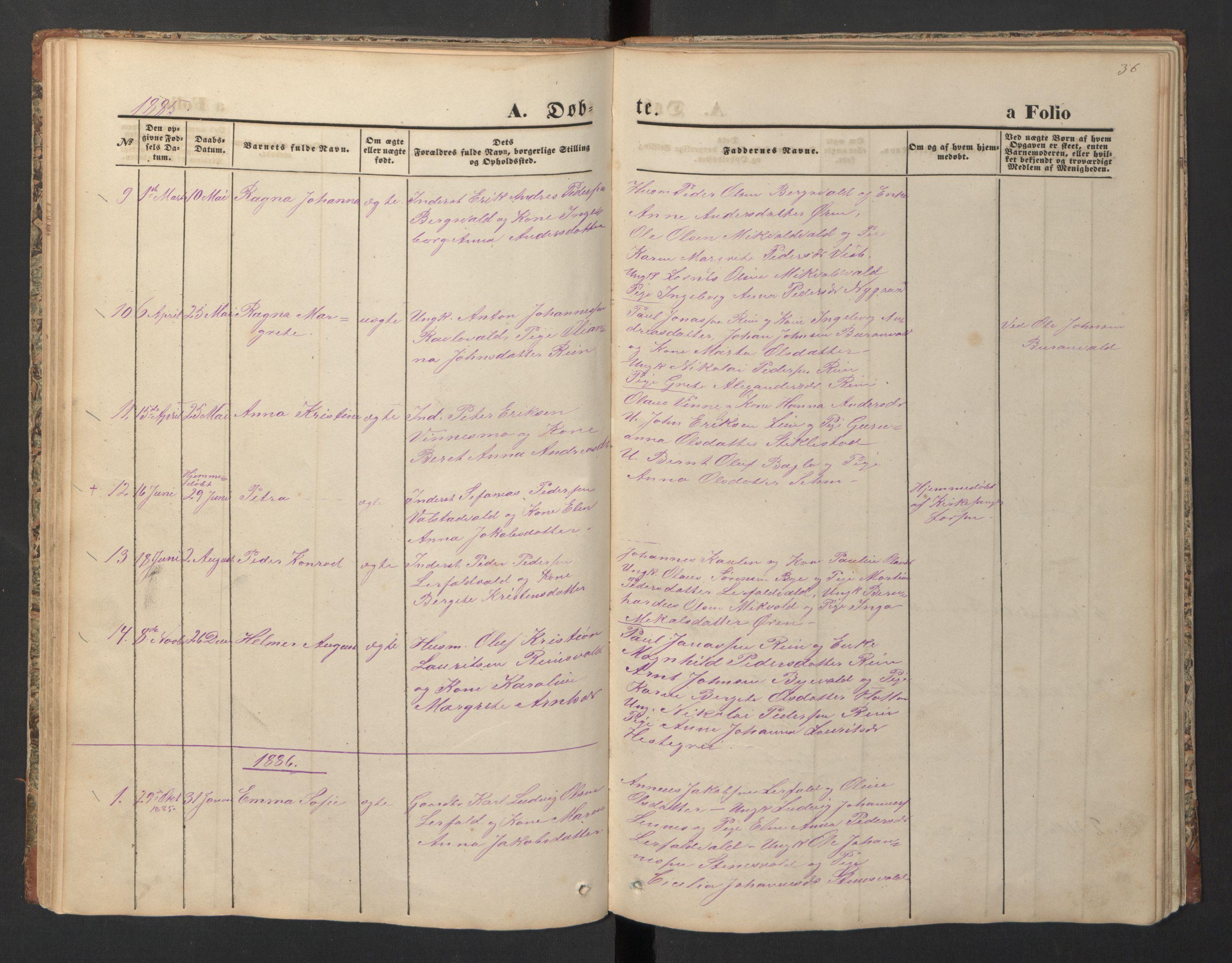 SAT, Ministerialprotokoller, klokkerbøker og fødselsregistre - Nord-Trøndelag, 726/L0271: Klokkerbok nr. 726C02, 1869-1897, s. 36