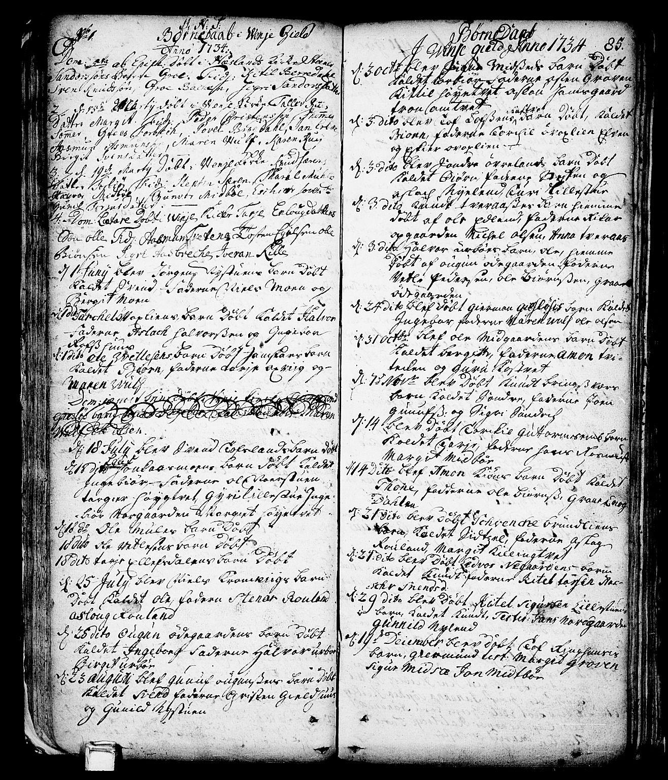 SAKO, Vinje kirkebøker, F/Fa/L0001: Ministerialbok nr. I 1, 1717-1766, s. 85