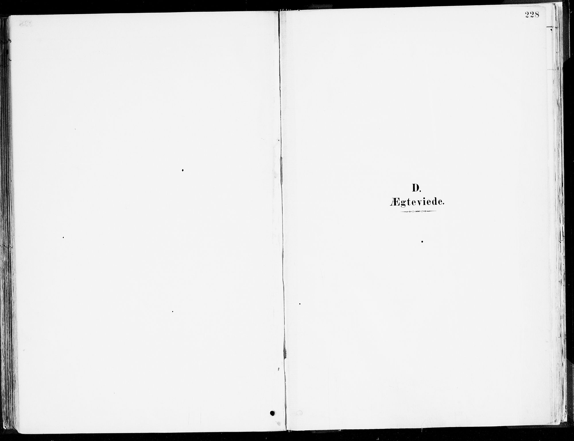 SAB, Årdal Sokneprestembete, Ministerialbok nr. A 5, 1887-1917, s. 228