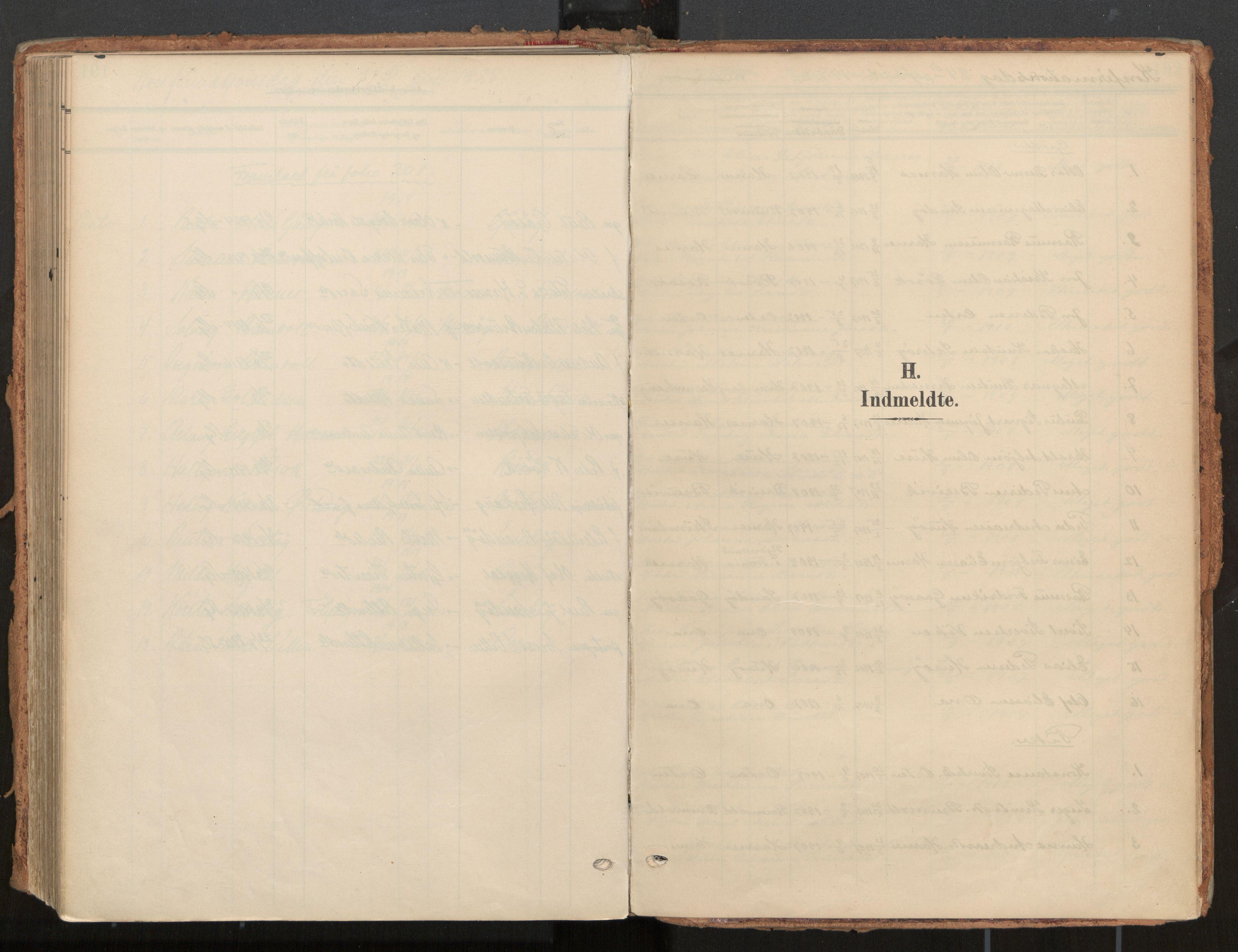 SAT, Ministerialprotokoller, klokkerbøker og fødselsregistre - Møre og Romsdal, 561/L0730: Ministerialbok nr. 561A04, 1901-1929
