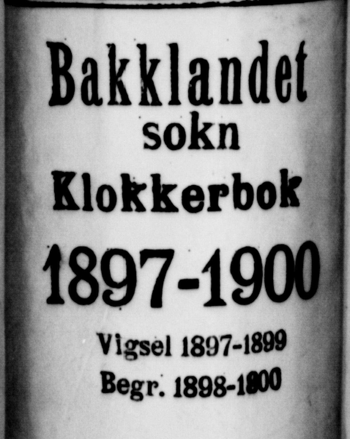 SAT, Ministerialprotokoller, klokkerbøker og fødselsregistre - Sør-Trøndelag, 604/L0226: Klokkerbok nr. 604C09, 1897-1900
