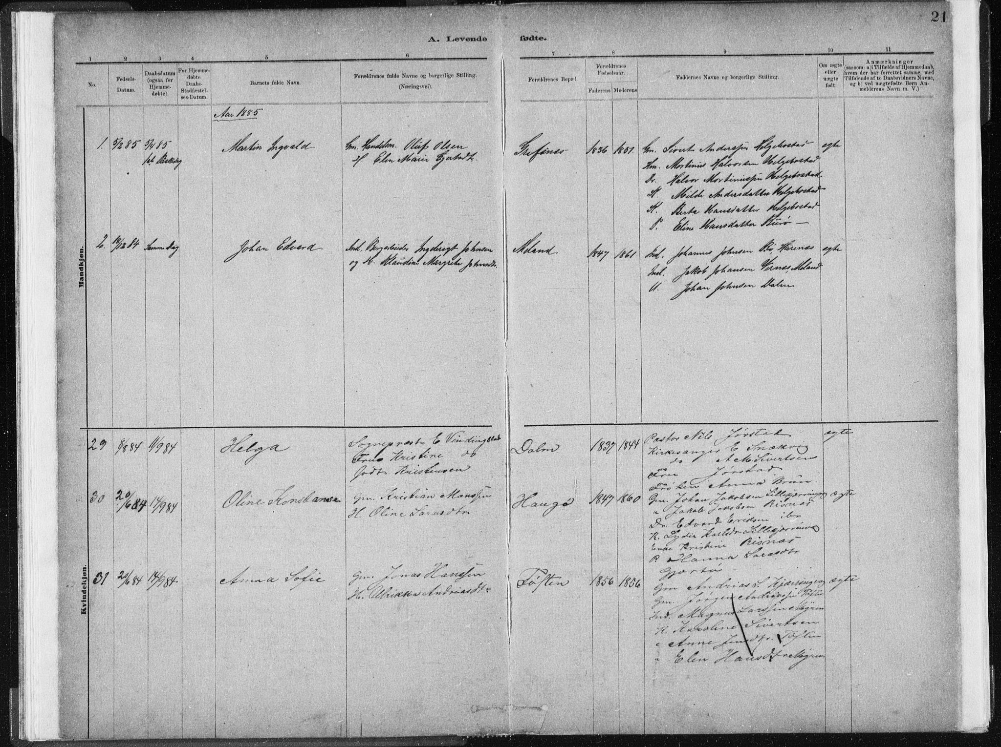 SAT, Ministerialprotokoller, klokkerbøker og fødselsregistre - Sør-Trøndelag, 634/L0533: Ministerialbok nr. 634A09, 1882-1901, s. 21