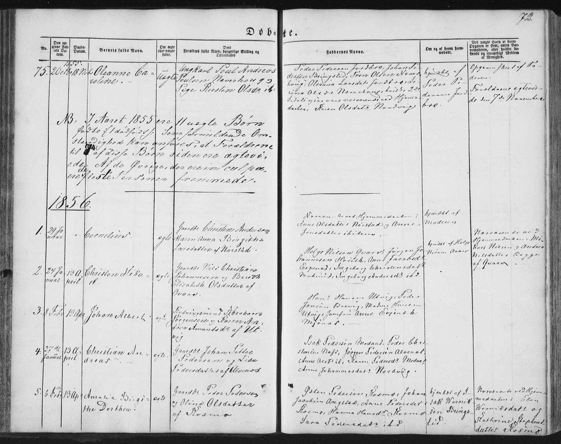 SAT, Ministerialprotokoller, klokkerbøker og fødselsregistre - Nordland, 852/L0738: Ministerialbok nr. 852A08, 1849-1865, s. 72