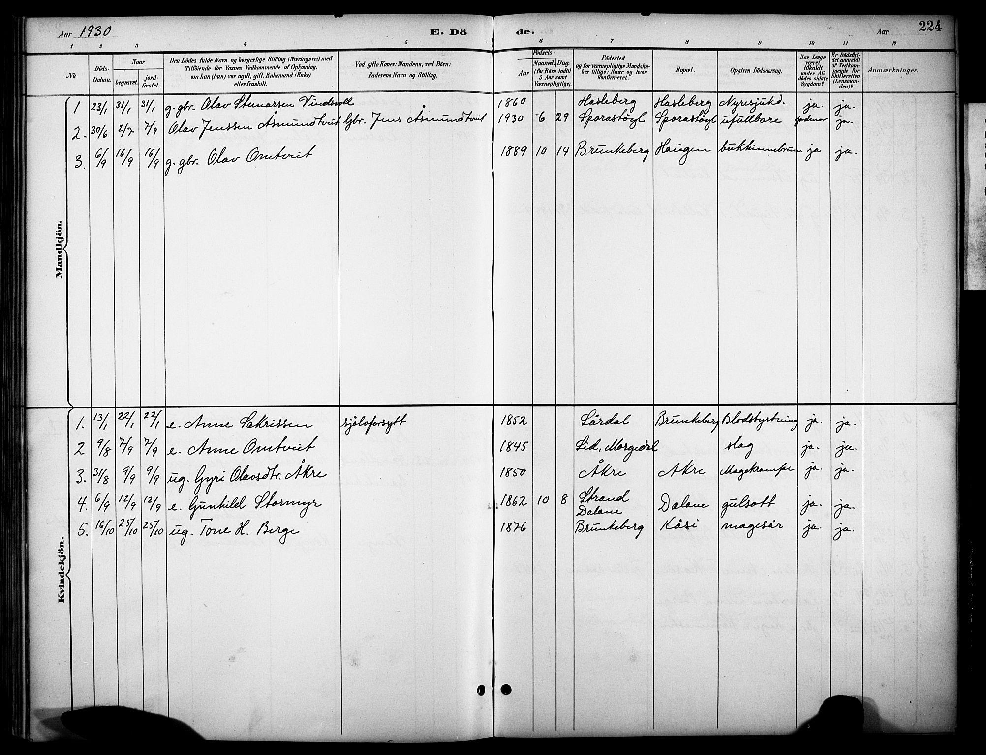 SAKO, Kviteseid kirkebøker, G/Gb/L0003: Klokkerbok nr. II 3, 1893-1933, s. 224