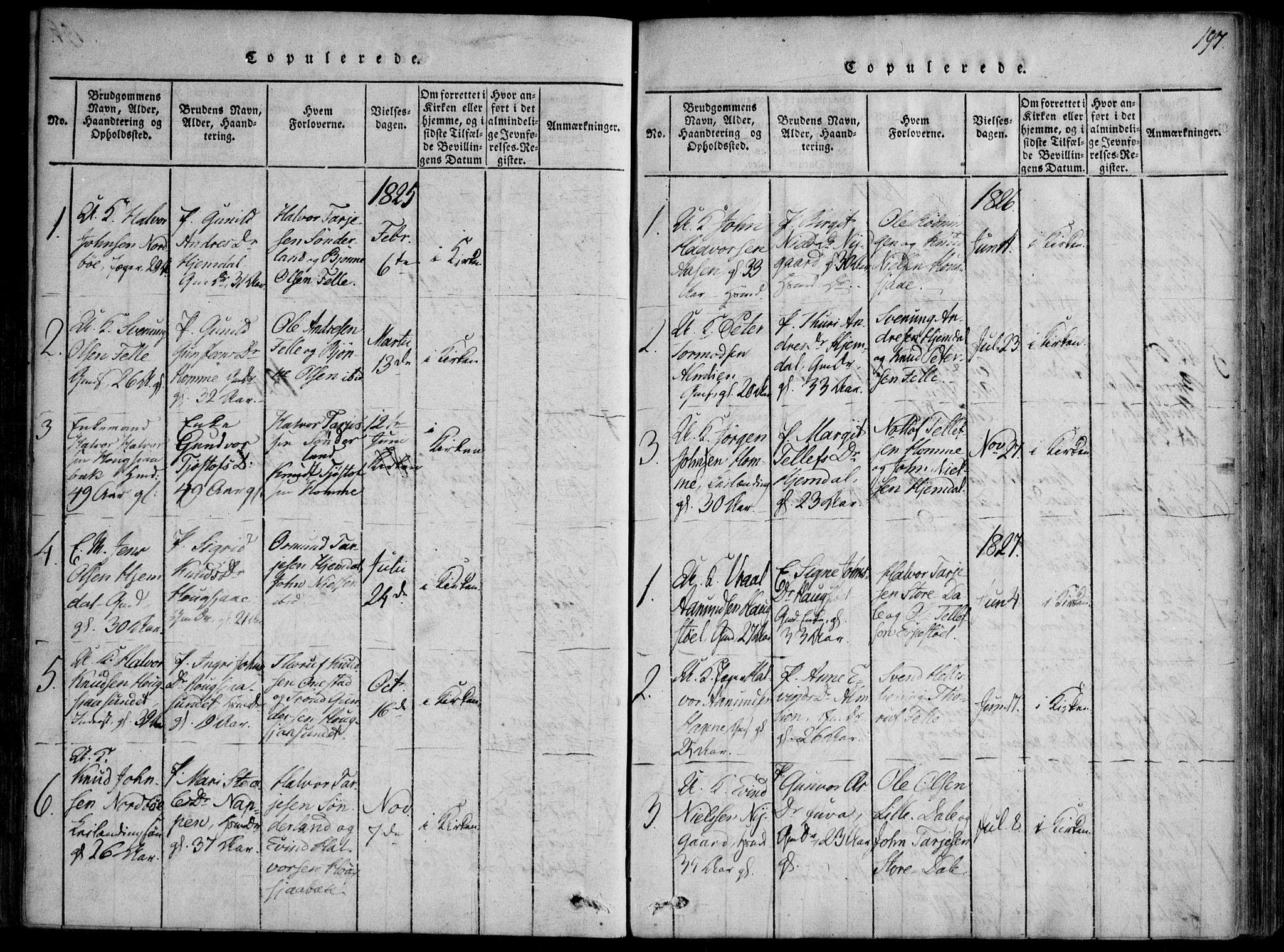 SAKO, Nissedal kirkebøker, F/Fb/L0001: Ministerialbok nr. II 1, 1814-1845, s. 197