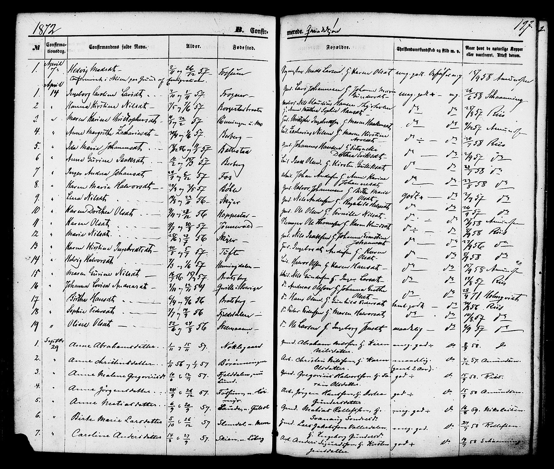 SAKO, Gjerpen kirkebøker, F/Fa/L0009: Ministerialbok nr. 9, 1872-1885, s. 197