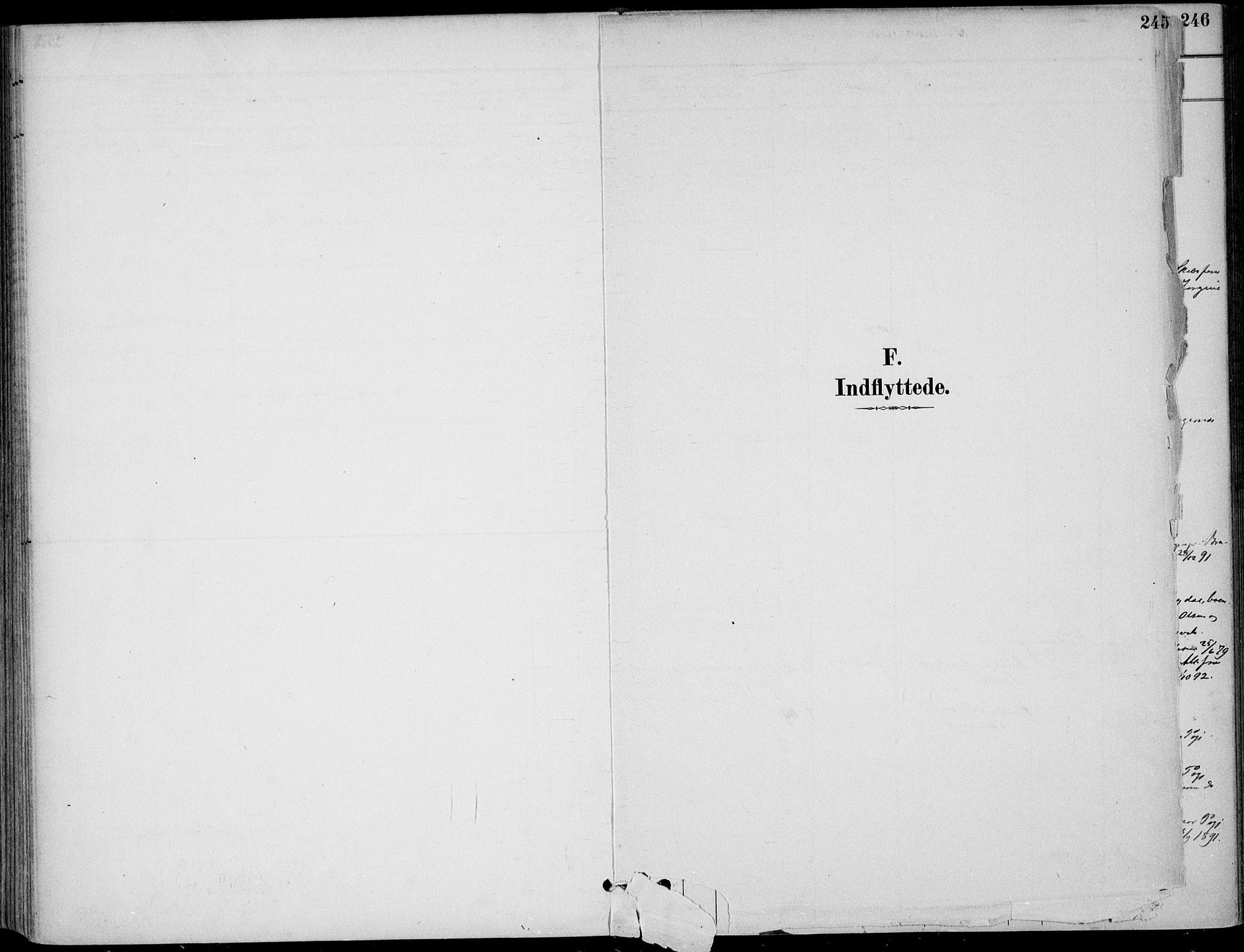 SAKO, Sigdal kirkebøker, F/Fb/L0001: Ministerialbok nr. II 1, 1888-1900, s. 245