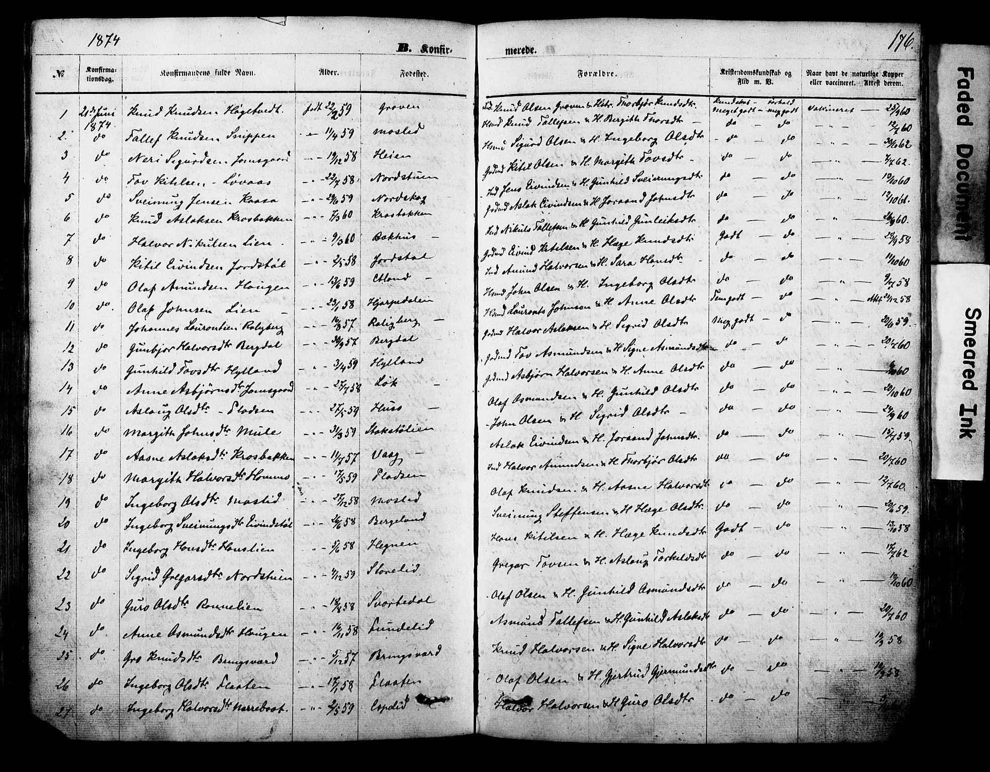 SAKO, Vinje kirkebøker, F/Fa/L0005: Ministerialbok nr. I 5, 1870-1886, s. 176