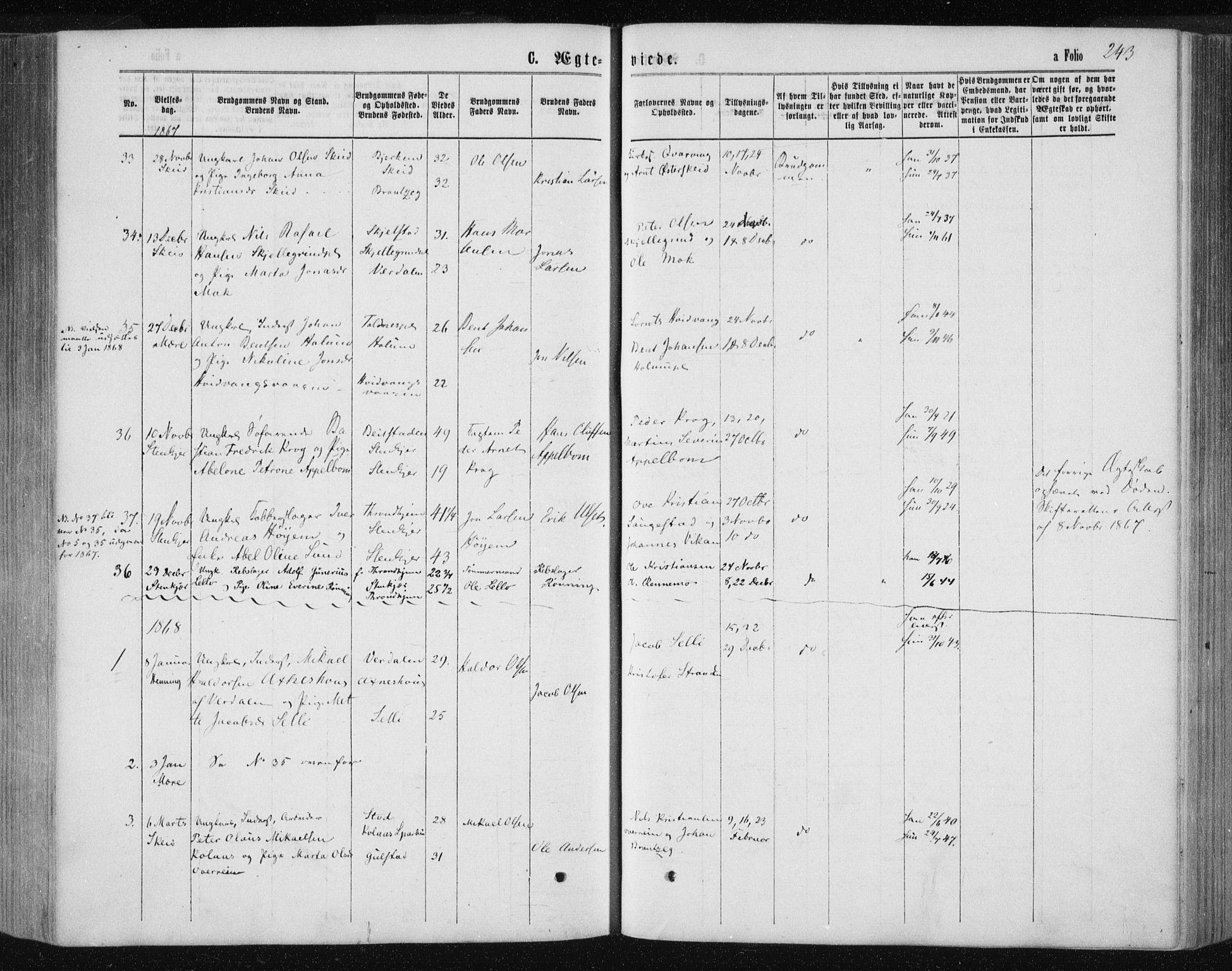 SAT, Ministerialprotokoller, klokkerbøker og fødselsregistre - Nord-Trøndelag, 735/L0345: Ministerialbok nr. 735A08 /1, 1863-1872, s. 243