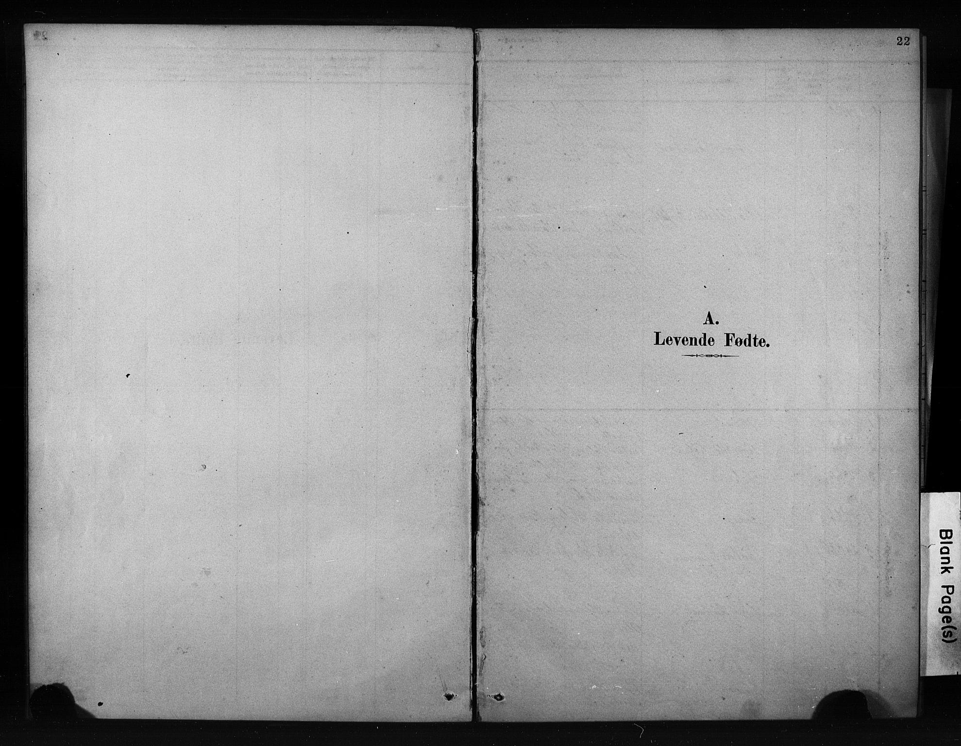 SAKO, Porsgrunn kirkebøker , F/Fa/L0009: Ministerialbok nr. 9, 1878-1923, s. 22