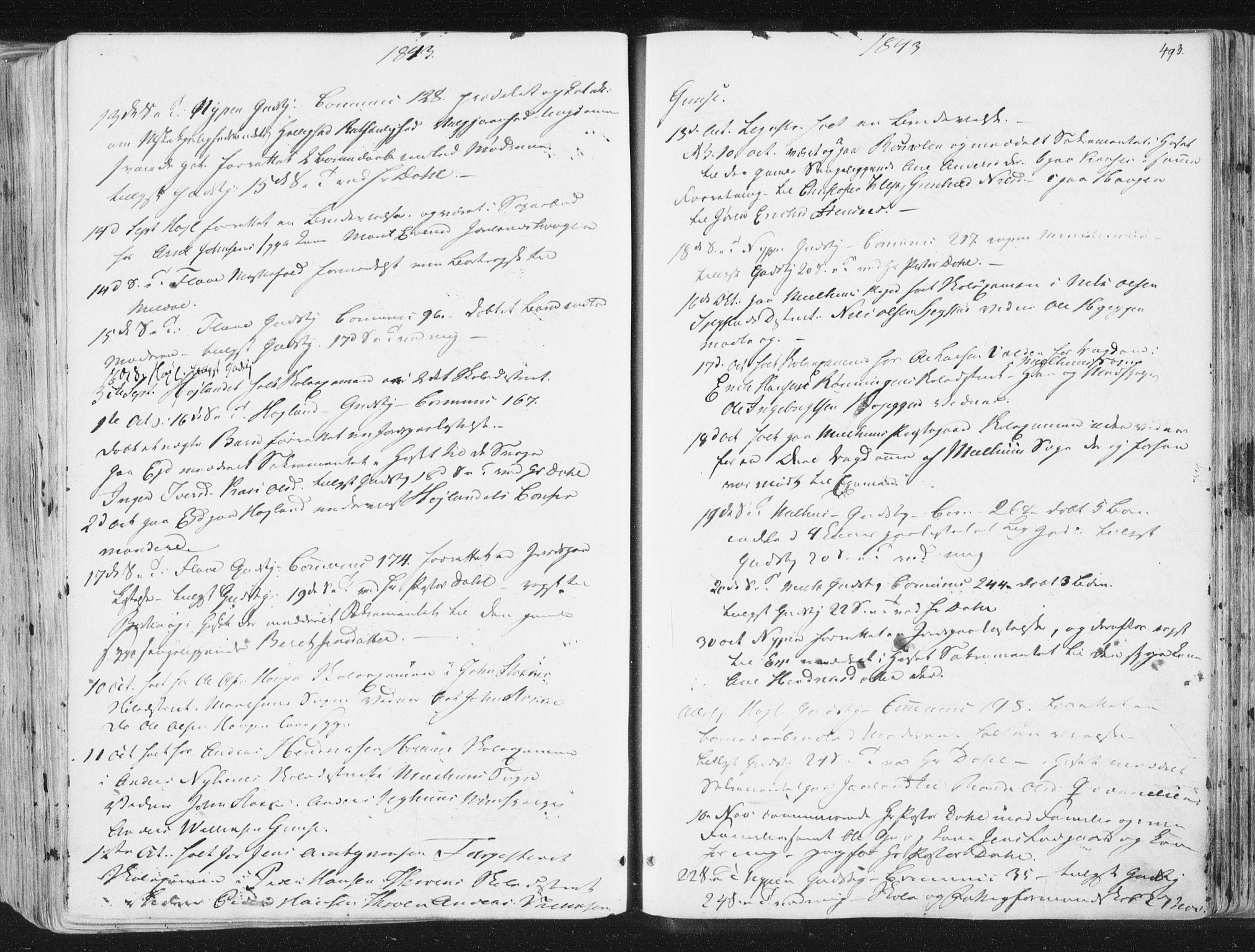 SAT, Ministerialprotokoller, klokkerbøker og fødselsregistre - Sør-Trøndelag, 691/L1074: Ministerialbok nr. 691A06, 1842-1852, s. 493