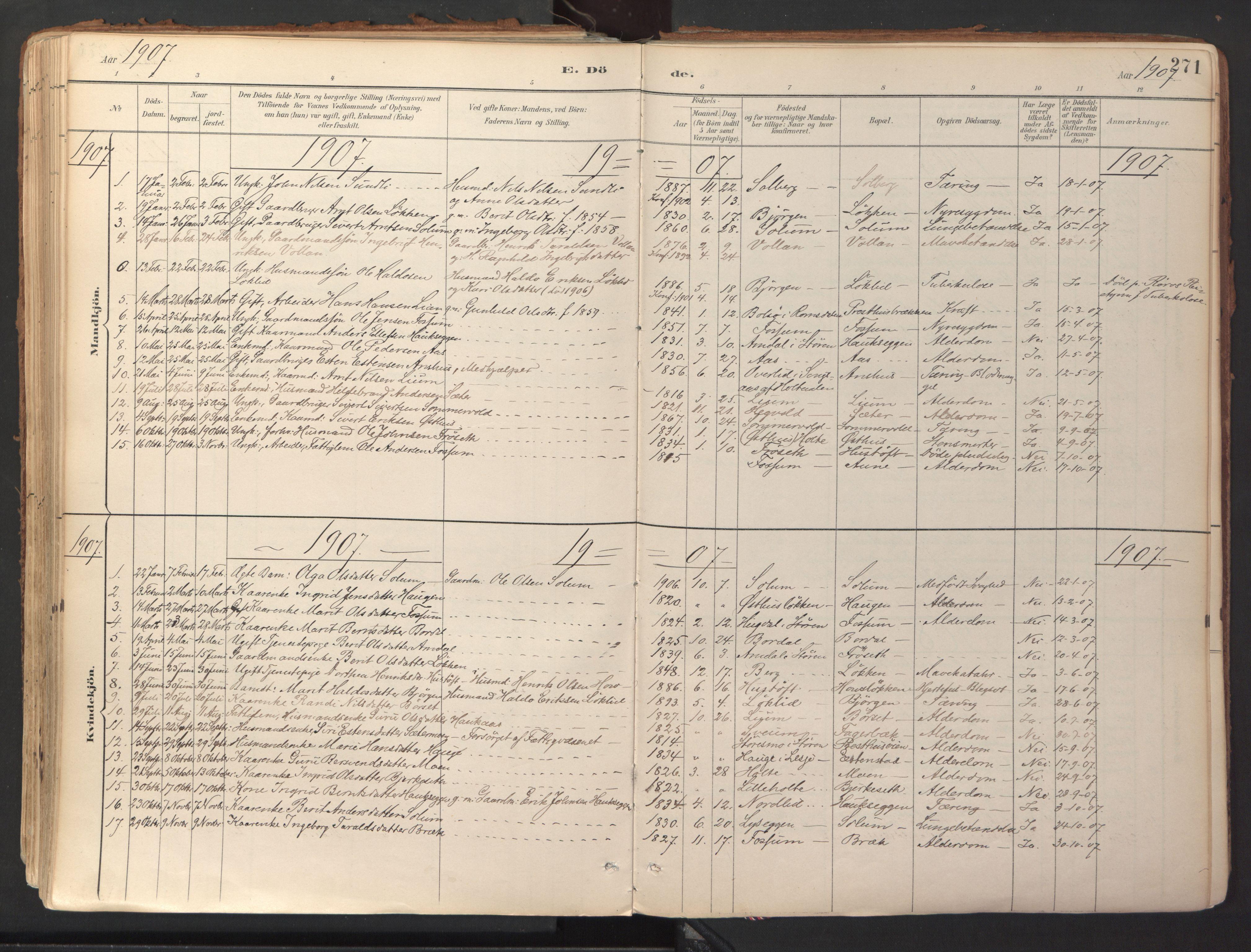 SAT, Ministerialprotokoller, klokkerbøker og fødselsregistre - Sør-Trøndelag, 689/L1041: Ministerialbok nr. 689A06, 1891-1923, s. 271