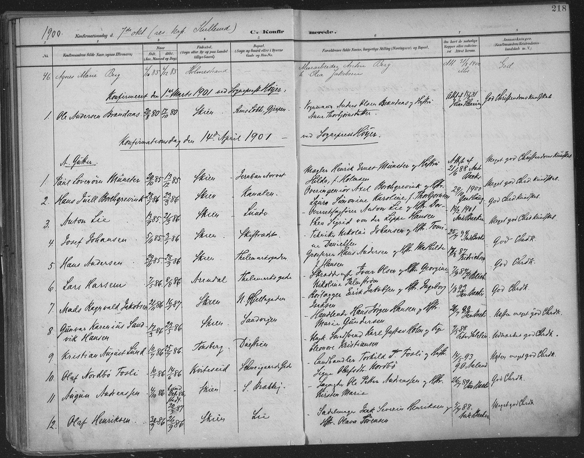 SAKO, Skien kirkebøker, F/Fa/L0011: Ministerialbok nr. 11, 1900-1907, s. 218