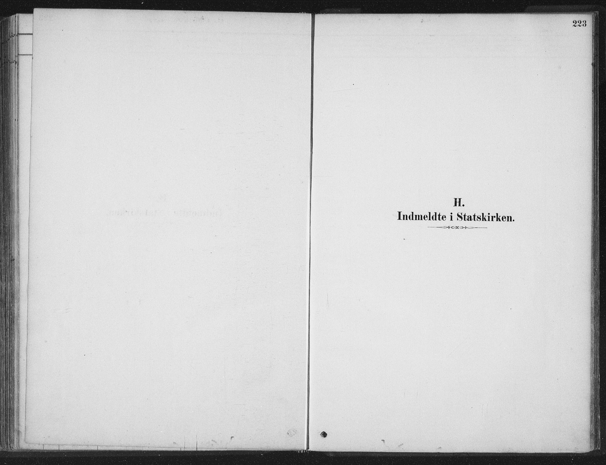 SAT, Ministerialprotokoller, klokkerbøker og fødselsregistre - Nord-Trøndelag, 788/L0697: Ministerialbok nr. 788A04, 1878-1902, s. 223