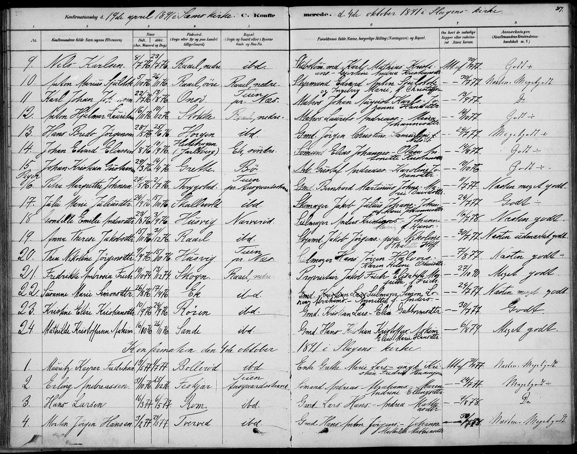 SAKO, Sem kirkebøker, F/Fb/L0004: Ministerialbok nr. II 4, 1878-1891, s. 217