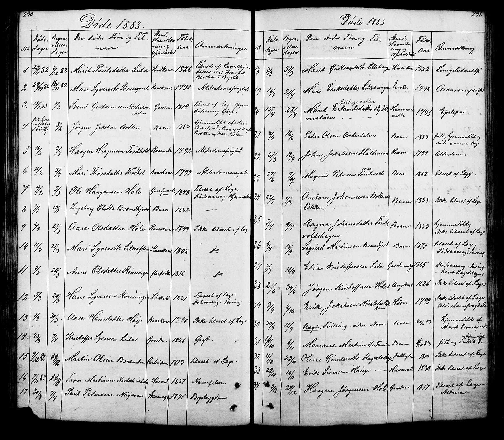 SAH, Lesja prestekontor, Klokkerbok nr. 5, 1850-1894, s. 290-291