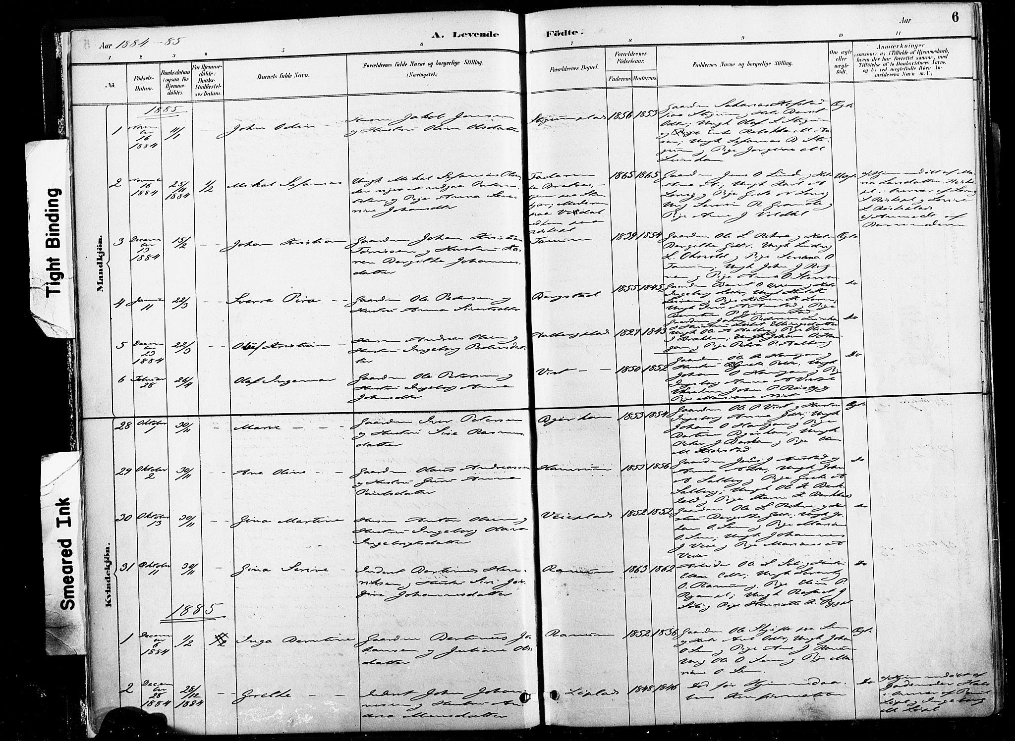 SAT, Ministerialprotokoller, klokkerbøker og fødselsregistre - Nord-Trøndelag, 735/L0351: Ministerialbok nr. 735A10, 1884-1908, s. 6