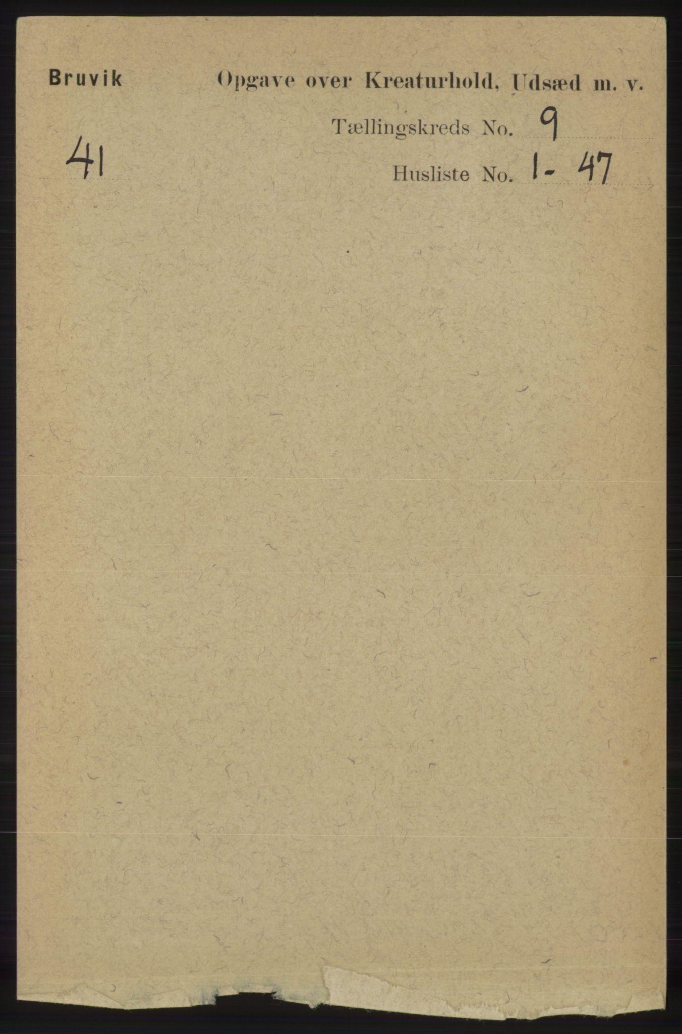 RA, Folketelling 1891 for 1251 Bruvik herred, 1891, s. 4800