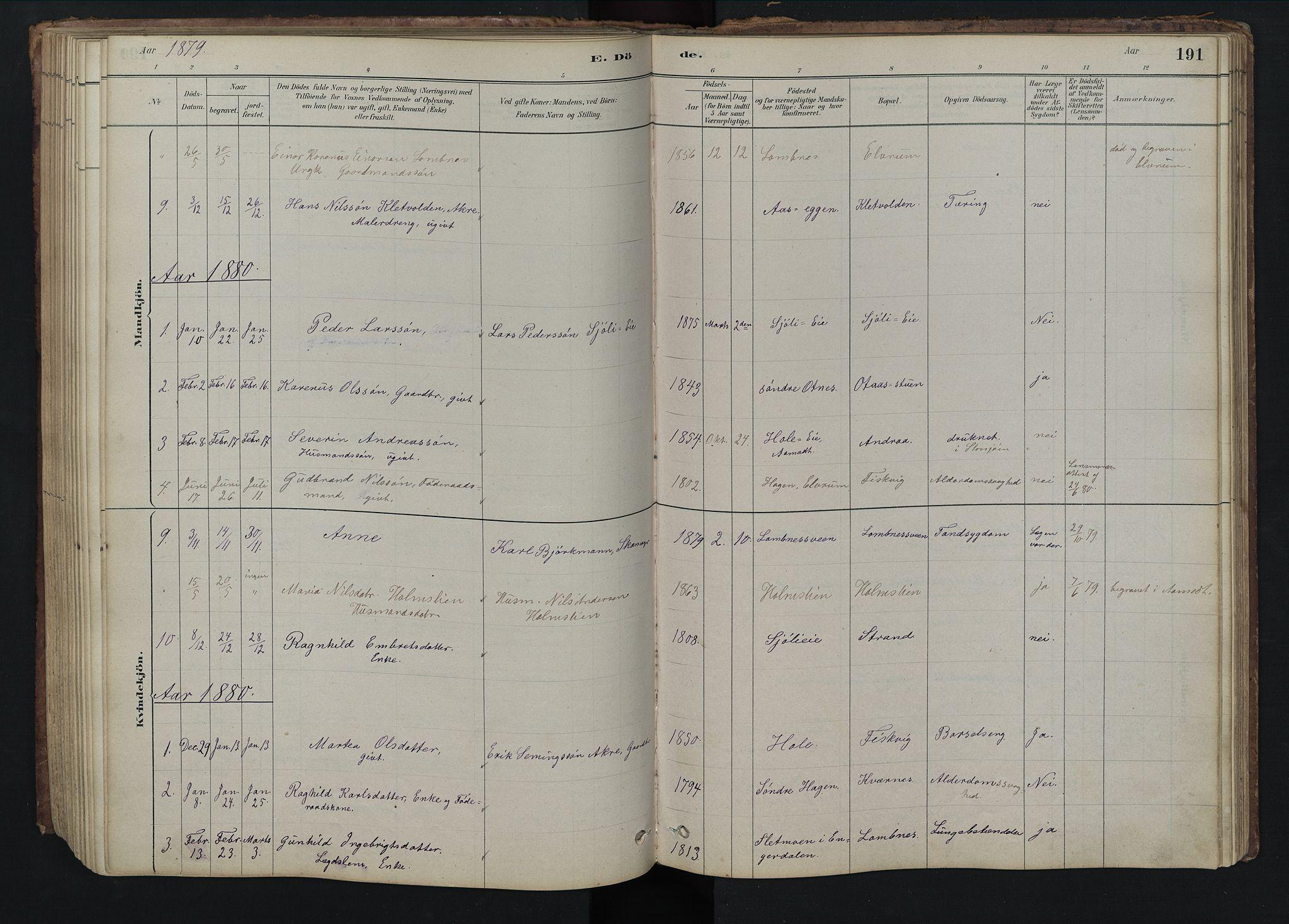 SAH, Rendalen prestekontor, H/Ha/Hab/L0009: Klokkerbok nr. 9, 1879-1902, s. 191