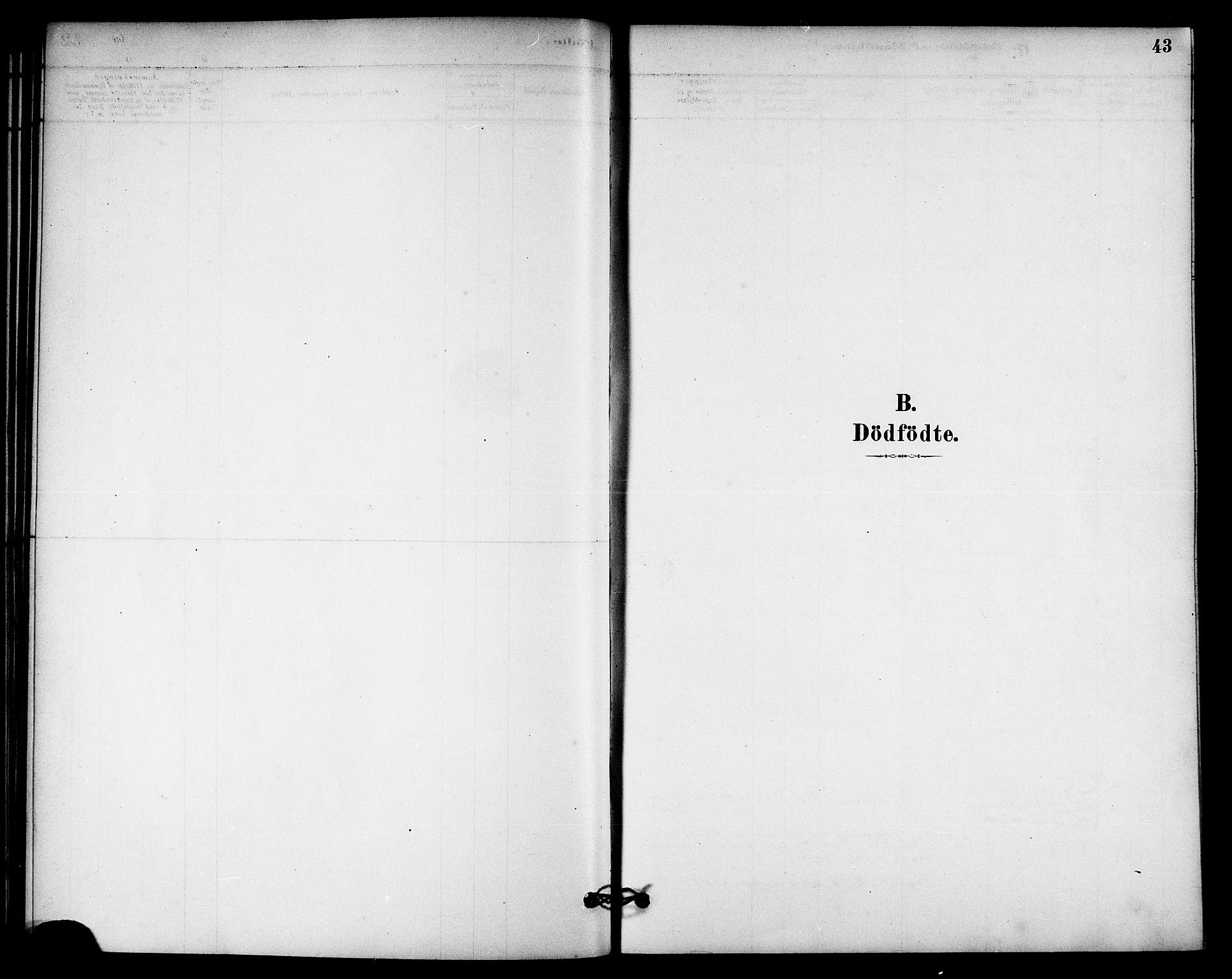 SAT, Ministerialprotokoller, klokkerbøker og fødselsregistre - Nord-Trøndelag, 740/L0378: Ministerialbok nr. 740A01, 1881-1895, s. 43