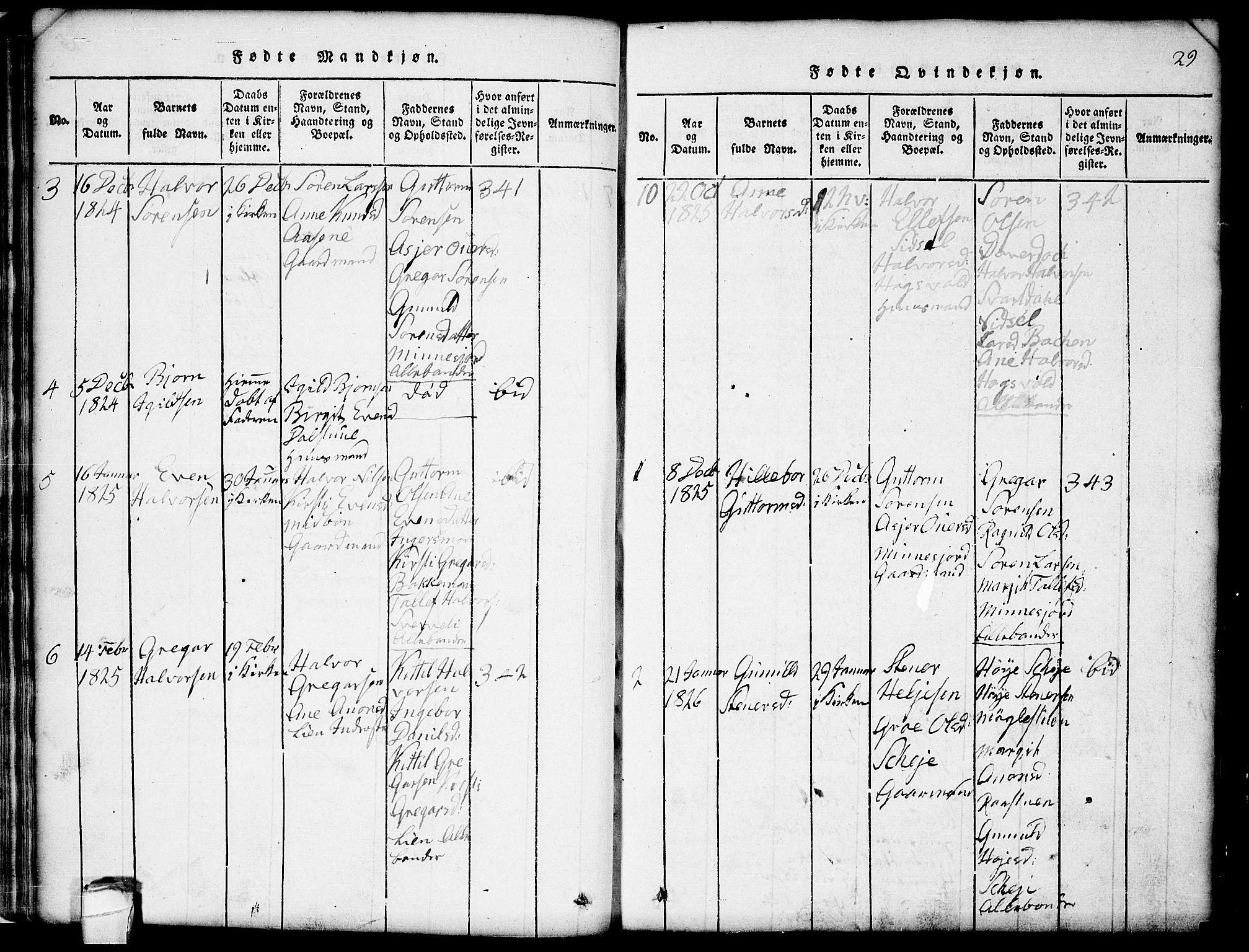 SAKO, Seljord kirkebøker, G/Gb/L0002: Klokkerbok nr. II 2, 1815-1854, s. 29