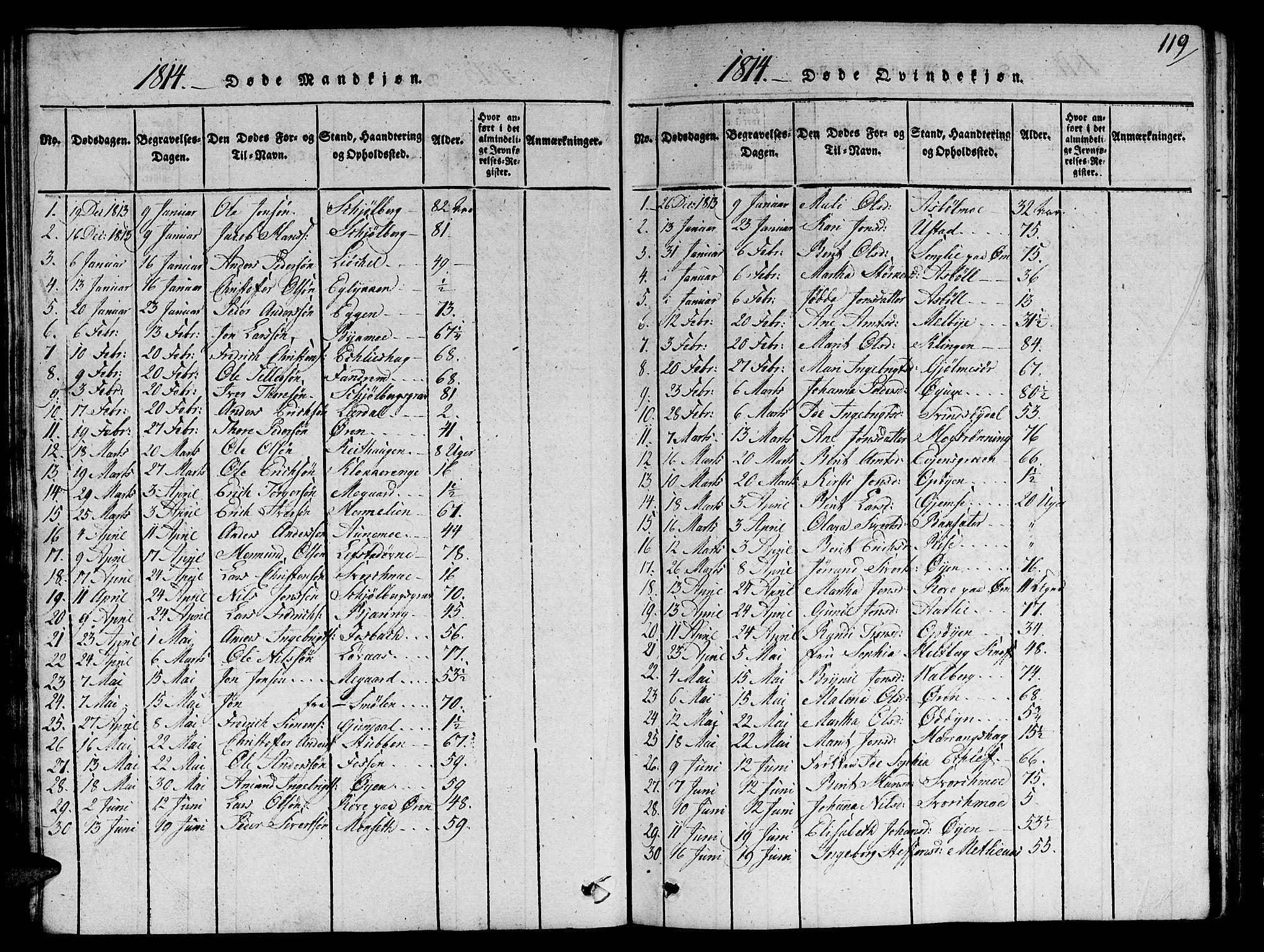 SAT, Ministerialprotokoller, klokkerbøker og fødselsregistre - Sør-Trøndelag, 668/L0803: Ministerialbok nr. 668A03, 1800-1826, s. 119