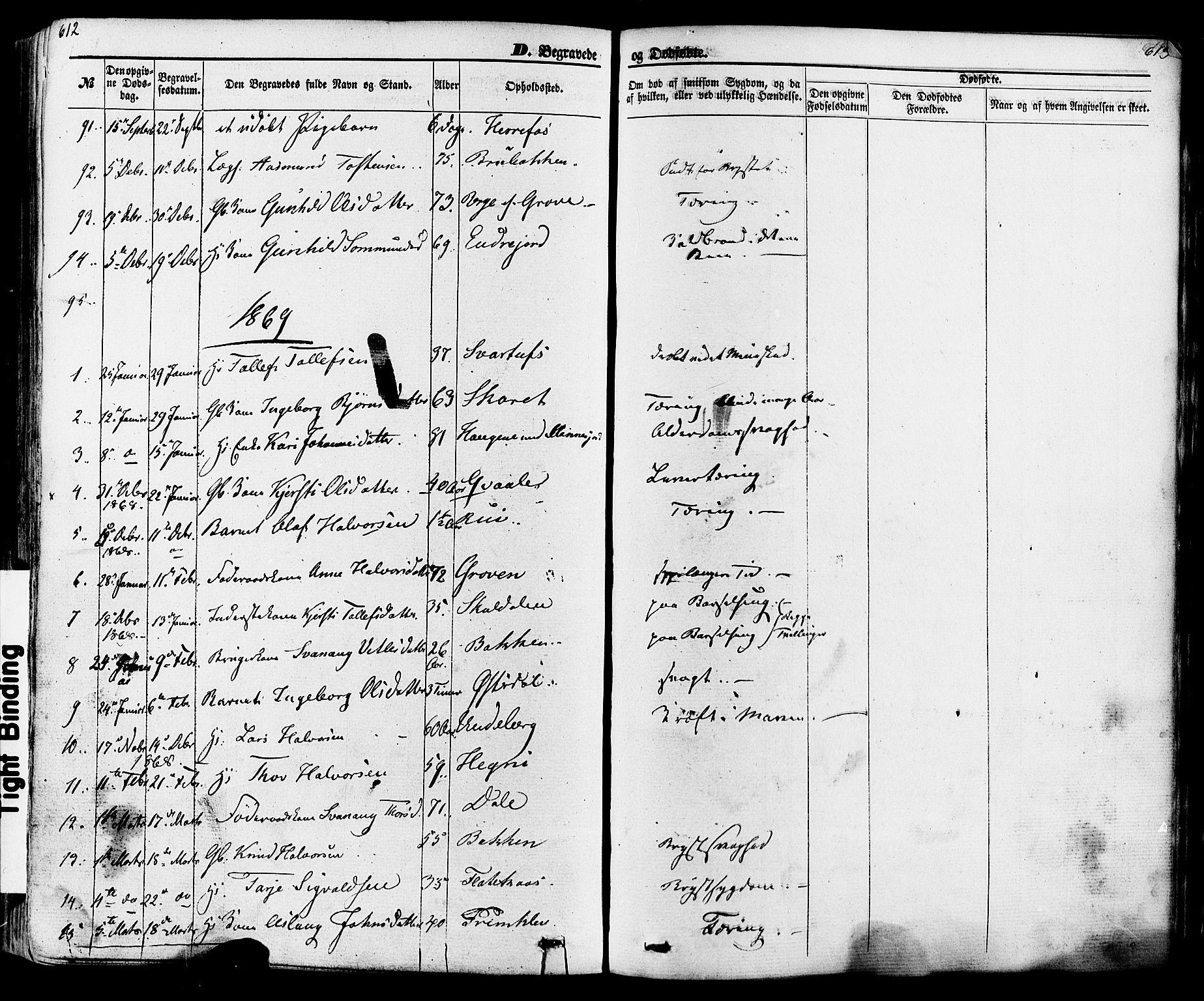 SAKO, Seljord kirkebøker, F/Fa/L0013: Ministerialbok nr. I 13, 1866-1876, s. 612-613