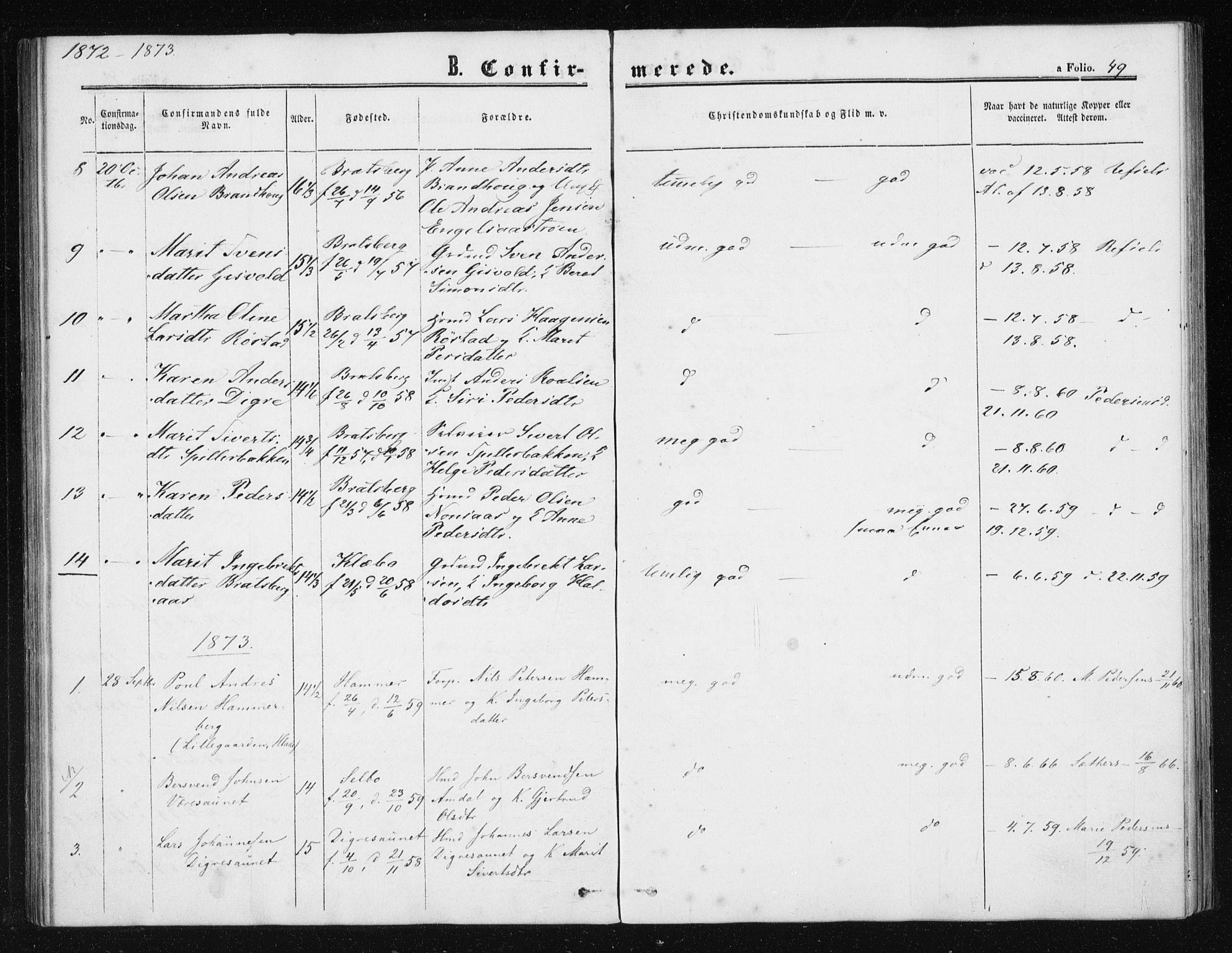 SAT, Ministerialprotokoller, klokkerbøker og fødselsregistre - Sør-Trøndelag, 608/L0333: Ministerialbok nr. 608A02, 1862-1876, s. 49