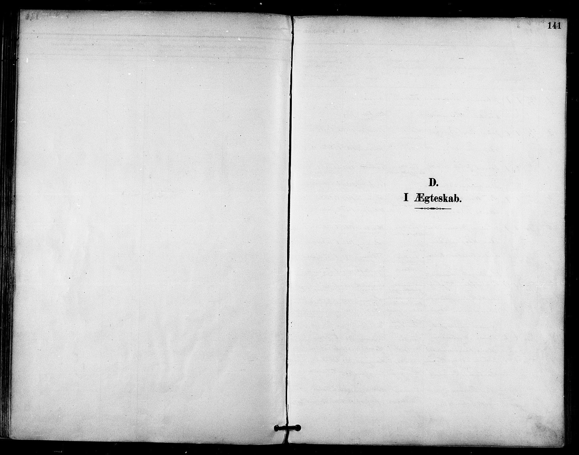 SATØ, Talvik sokneprestkontor, H/Ha/L0013kirke: Ministerialbok nr. 13, 1886-1897, s. 141