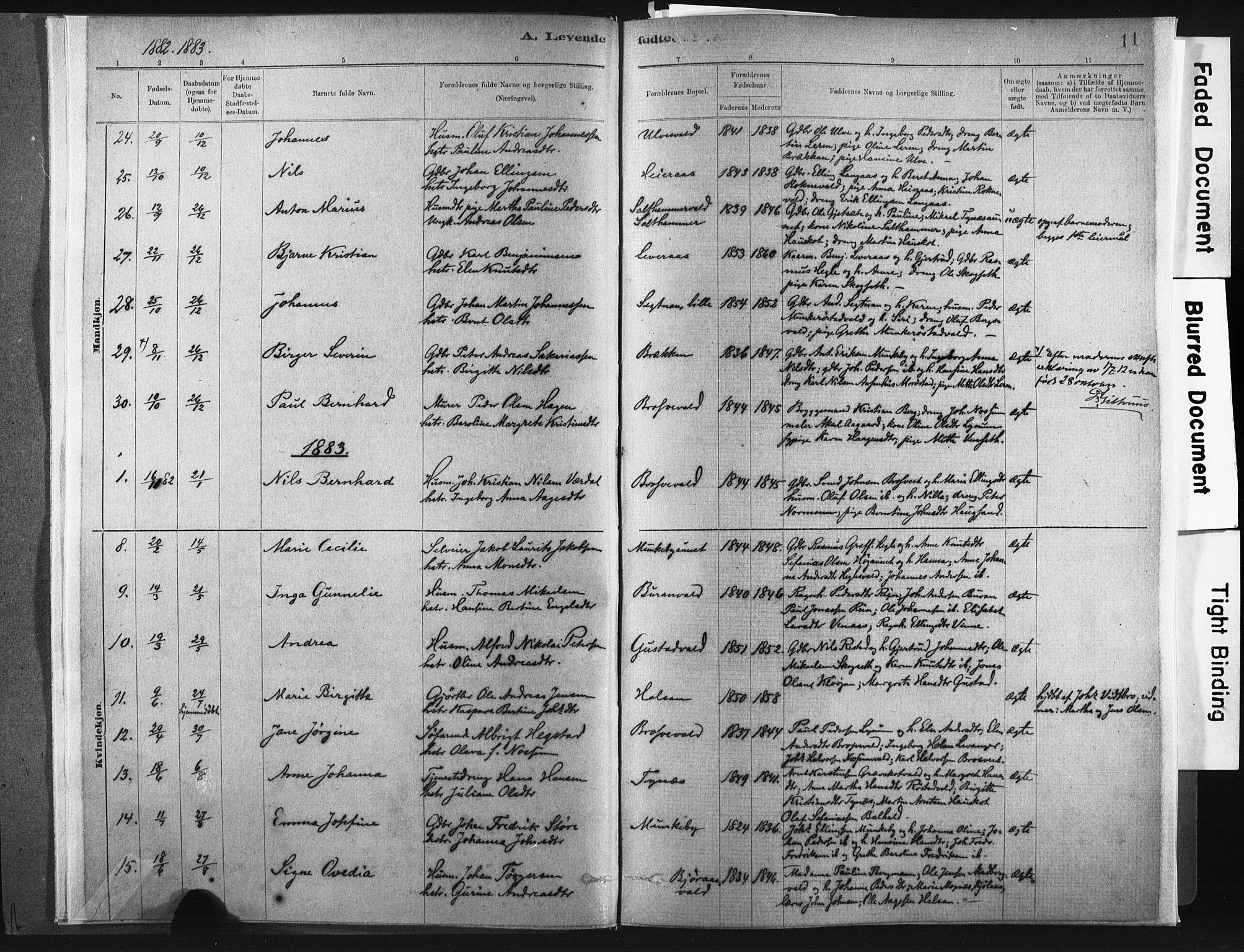 SAT, Ministerialprotokoller, klokkerbøker og fødselsregistre - Nord-Trøndelag, 721/L0207: Ministerialbok nr. 721A02, 1880-1911, s. 11