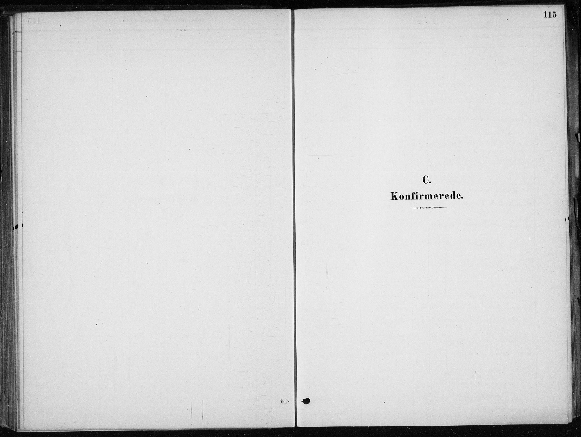 SAB, Skånevik Sokneprestembete, H/Haa: Ministerialbok nr. E  1, 1879-1901, s. 115