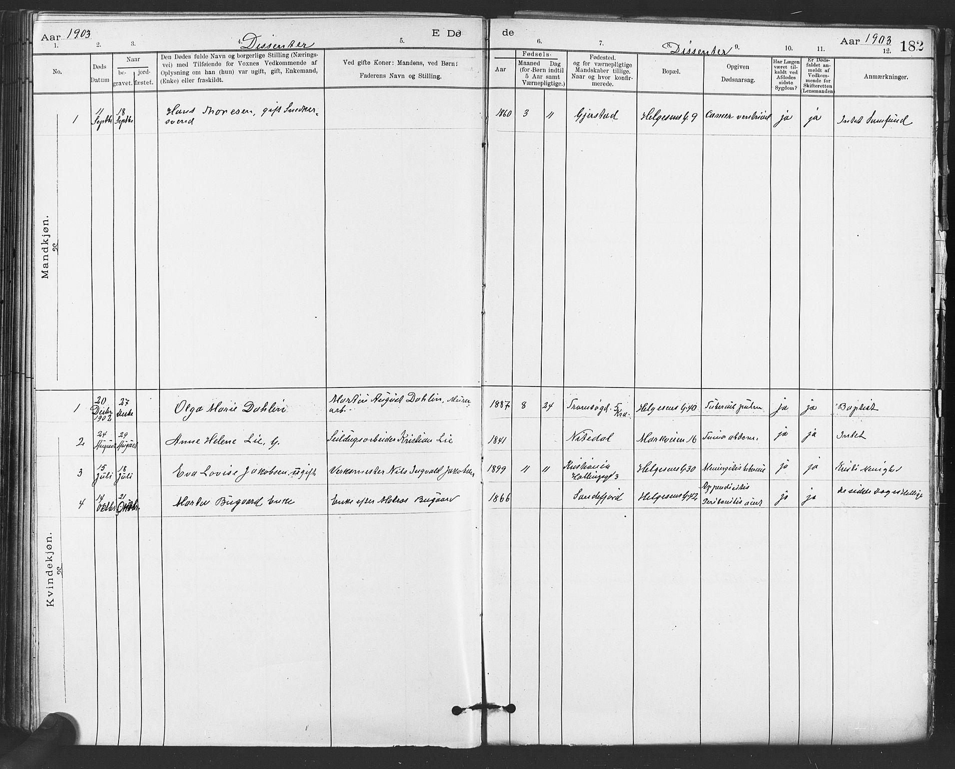SAO, Paulus prestekontor Kirkebøker, F/Fa/L0012: Ministerialbok nr. 12, 1897-1908, s. 182