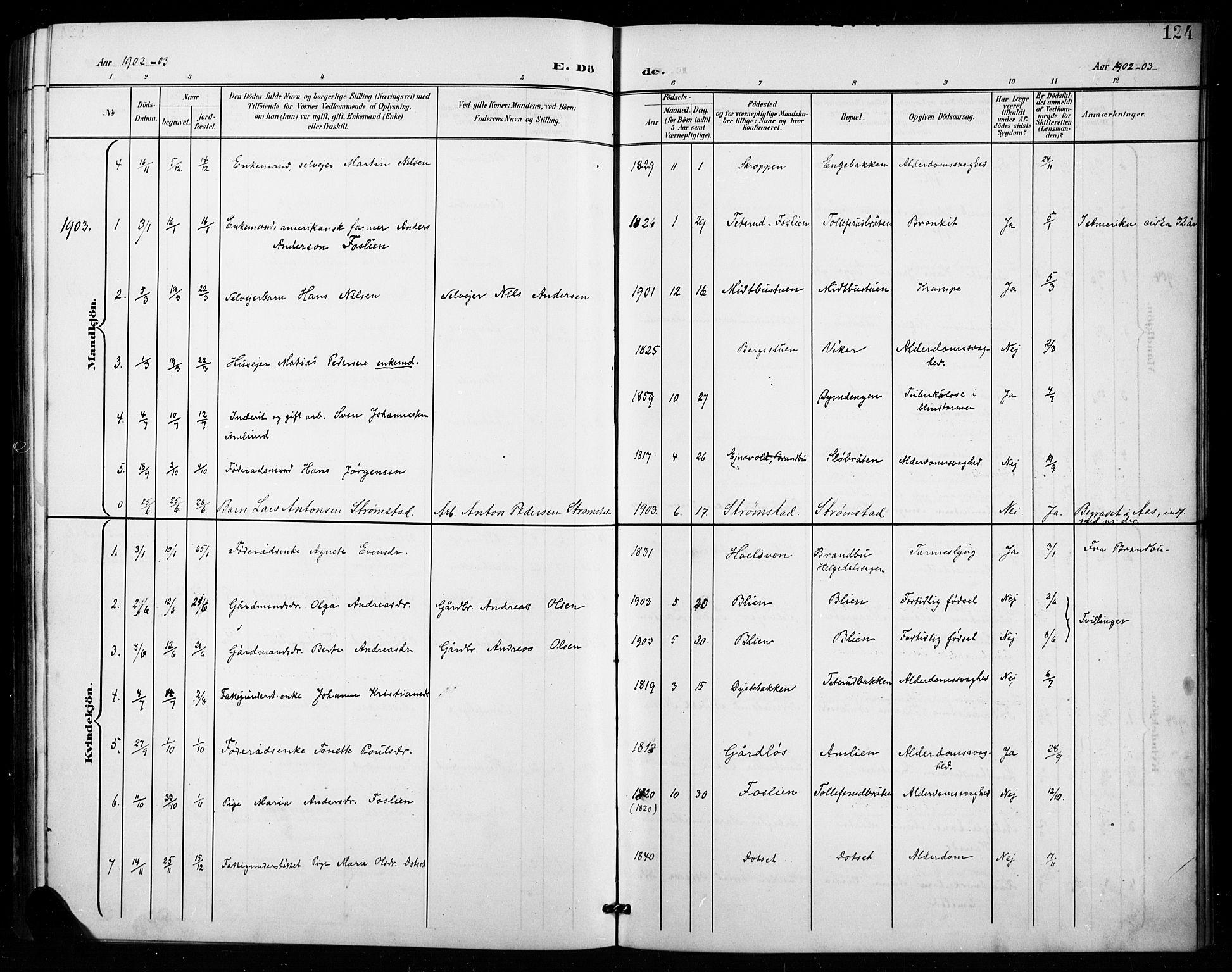 SAH, Vestre Toten prestekontor, H/Ha/Hab/L0016: Klokkerbok nr. 16, 1901-1915, s. 124